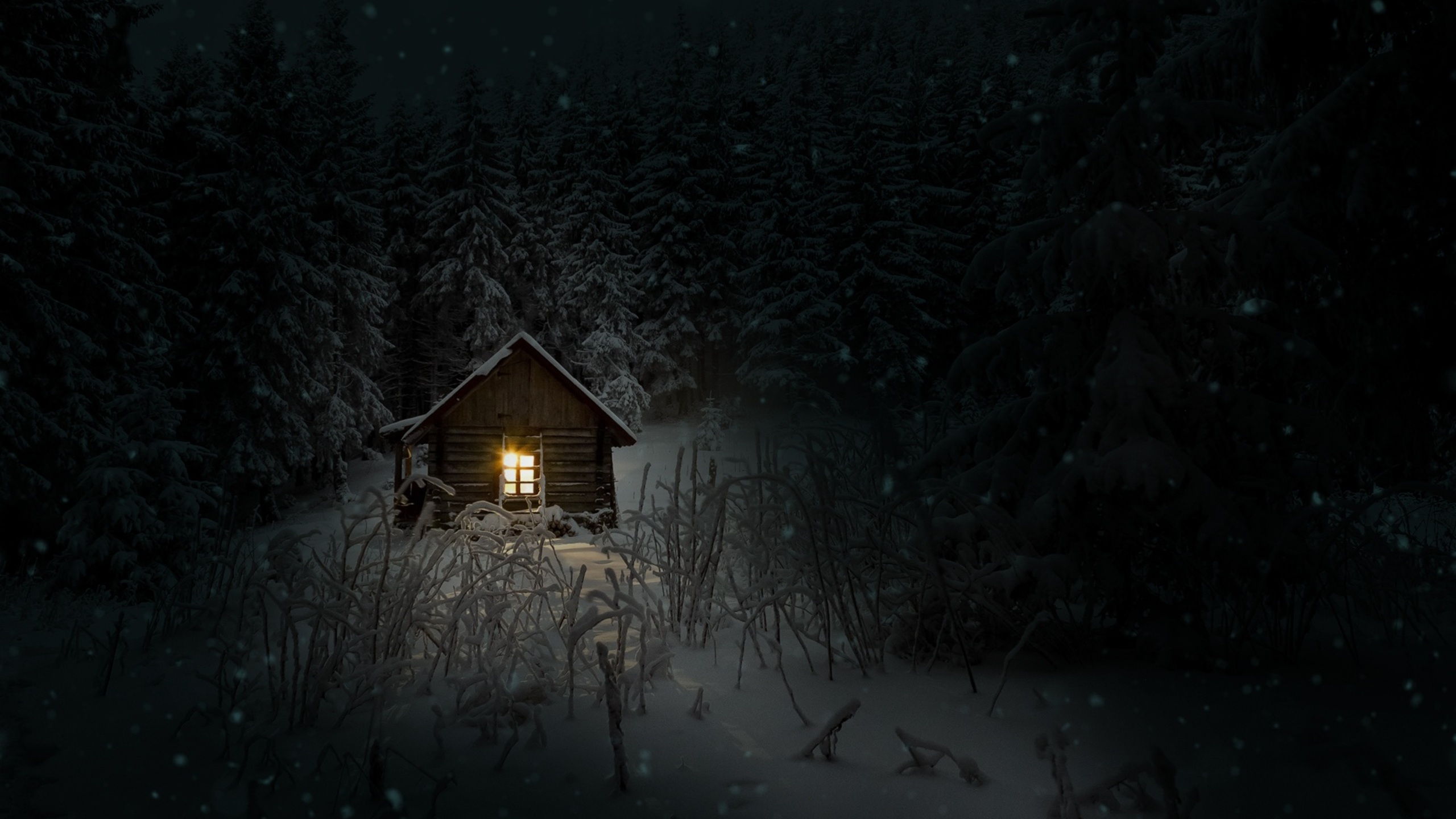2560x1440 House In Woods Winter Cold 1440p Resolution Hd 4k