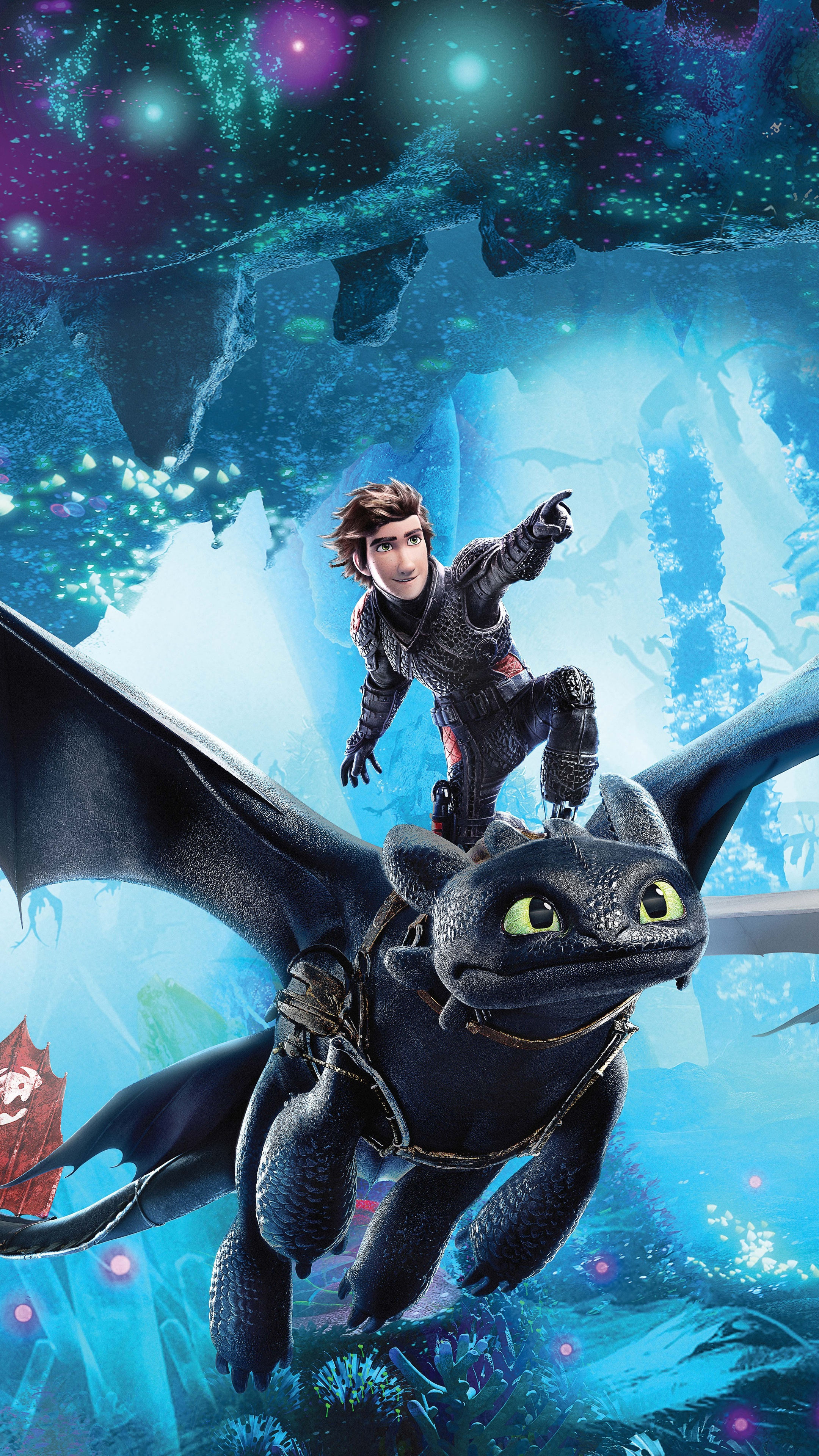 how-to-train-your-dragon-the-hidden-world-12k-poster-bm.jpg