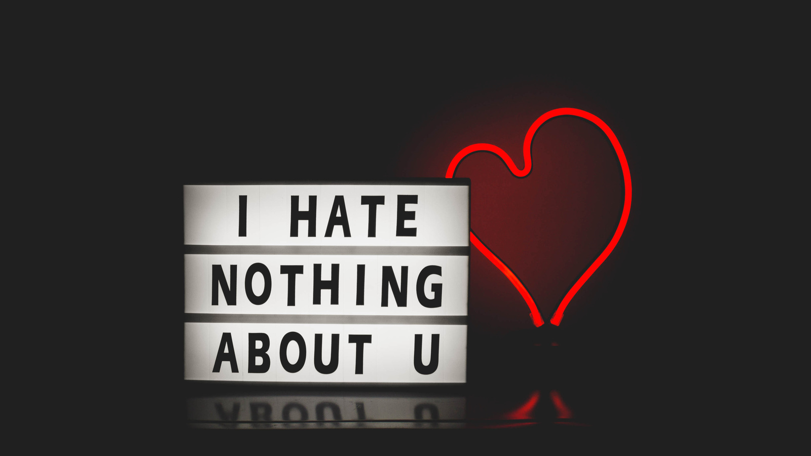 i-hate-nothing-about-you-n4.jpg