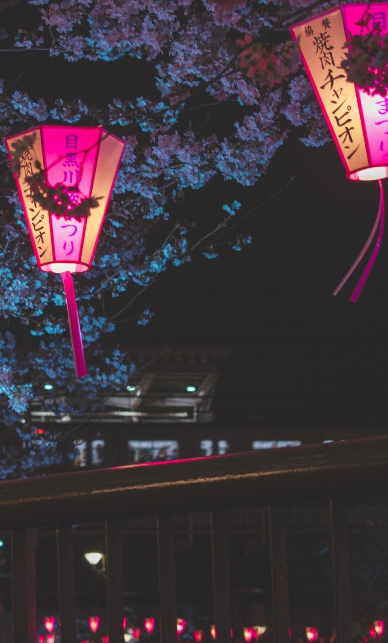 1280x2120 Japan Night Cherry Blossom Trees Lantern Glowing