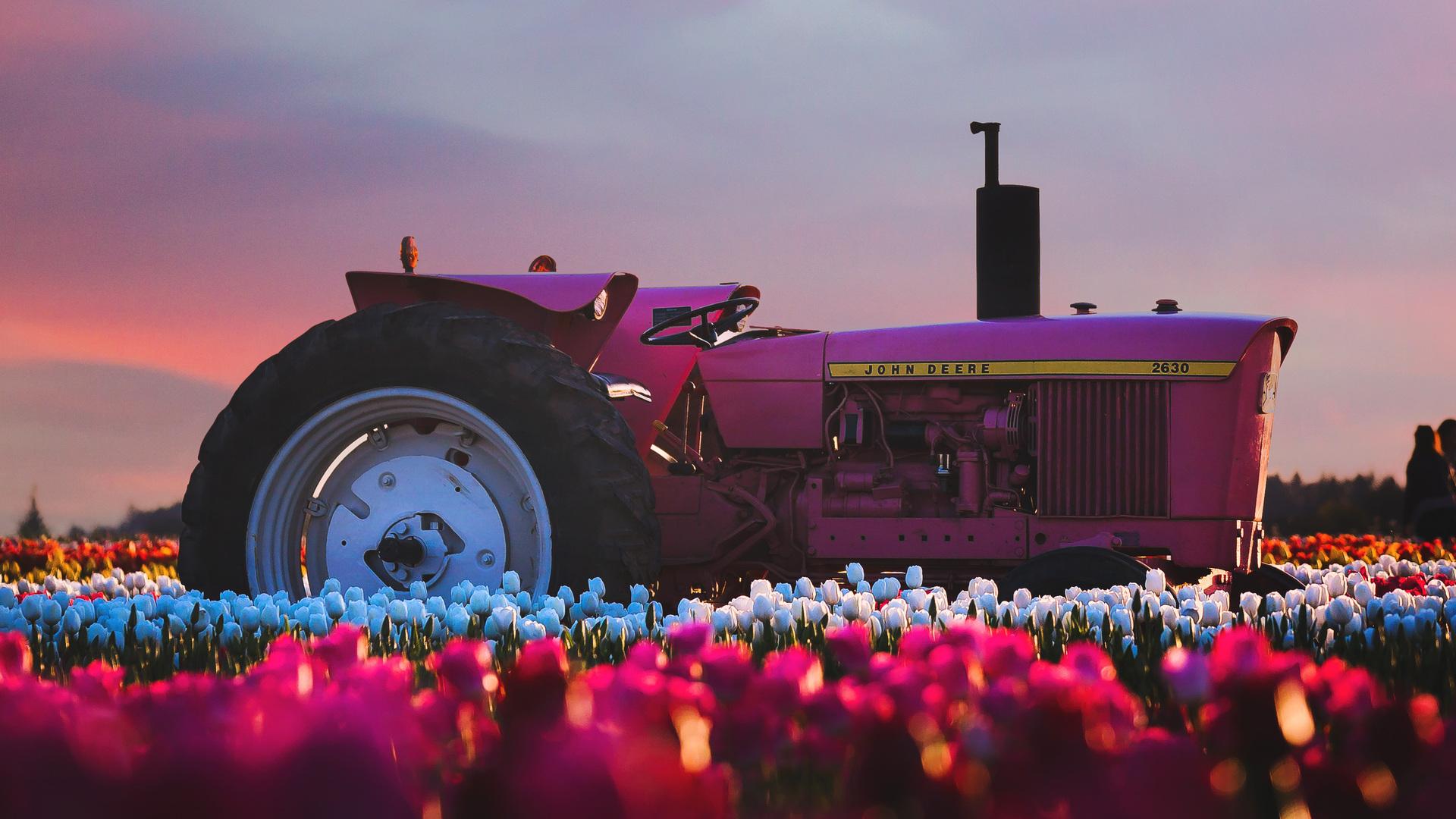john-deere-tractor-in-flower-farm-4k-p3.jpg