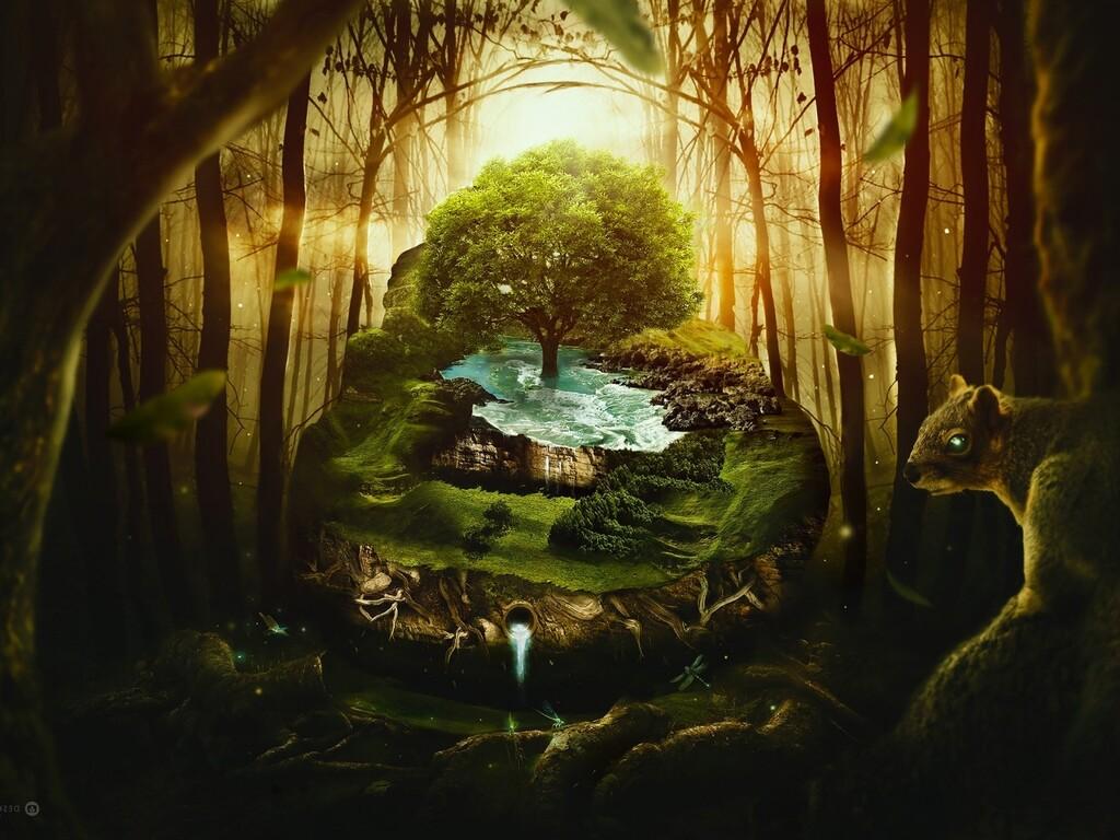 jungle-wildlife.jpg