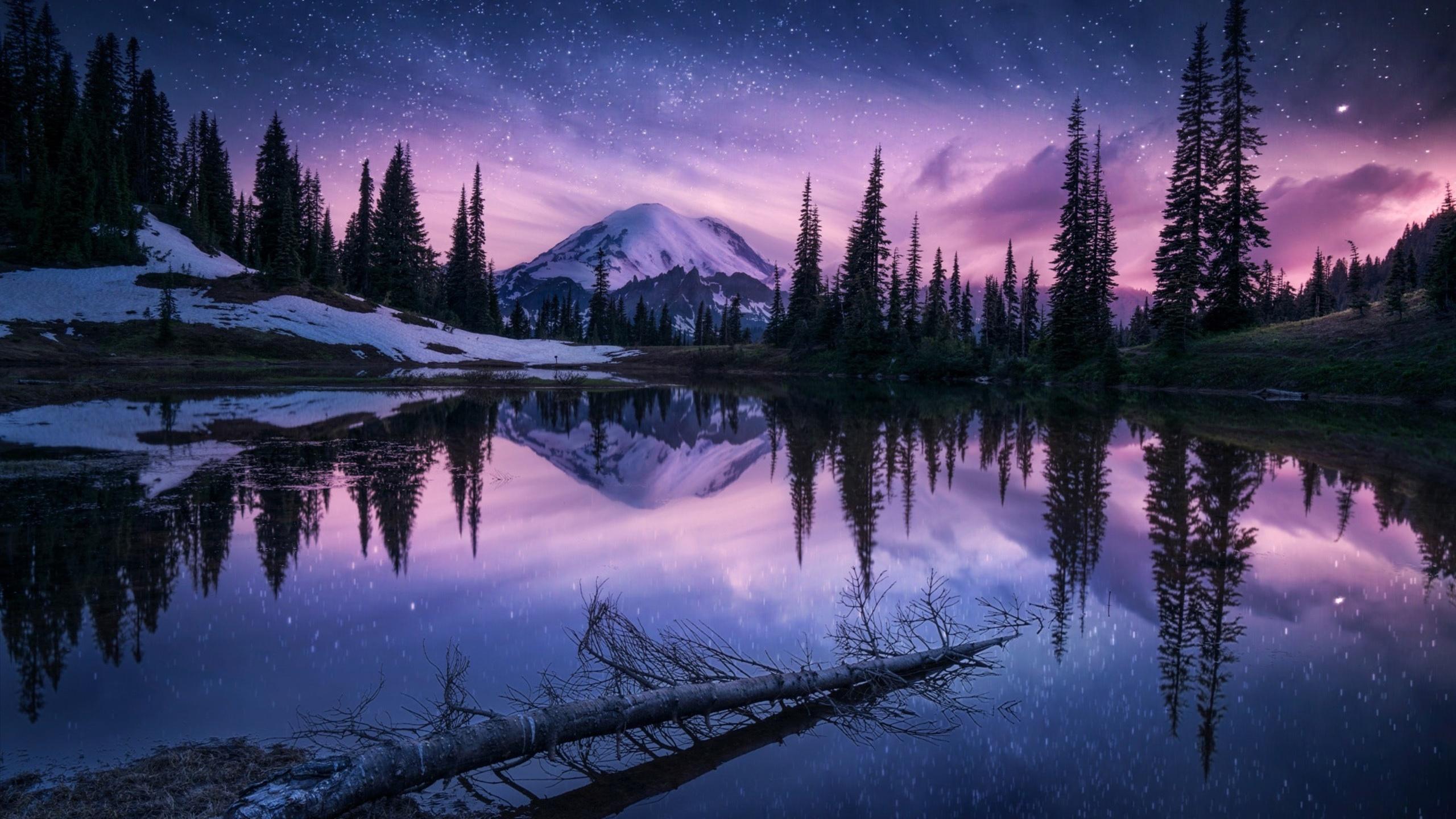 2560x1440 Lake Nature Night Reflection 1440P Resolution HD