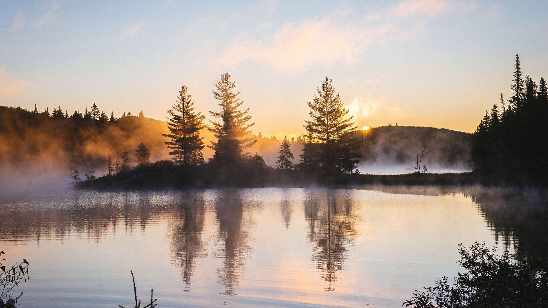 1920x1080 Lake Reflection Morning Mist Trees Nature Hd 4k ...