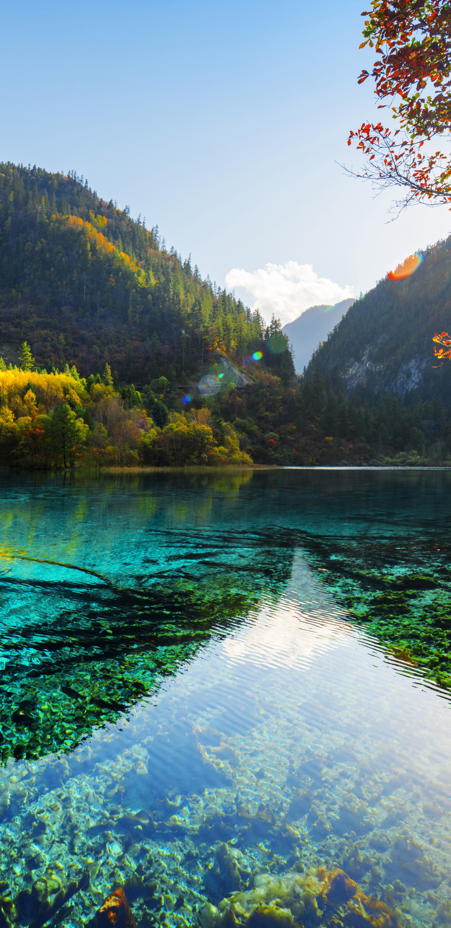 Get Inspired For High Quality 4k Resolution Ultra Hd Nature Wallpapers Wallpaper