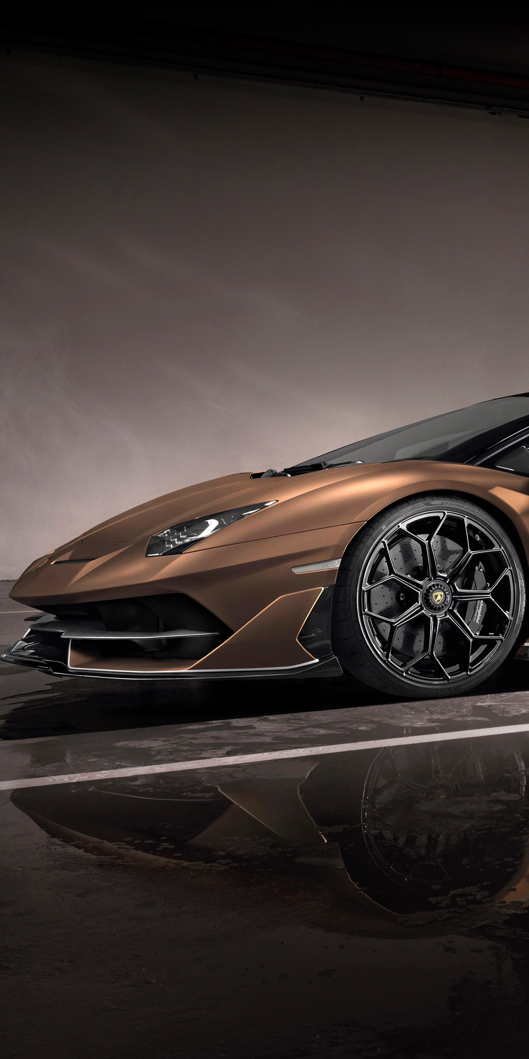 1080x2160 Lamborghini Aventador Svj Roadster 2019 Side View One Plus