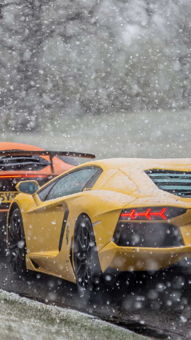 lambos-in-the-snow-cb.jpg