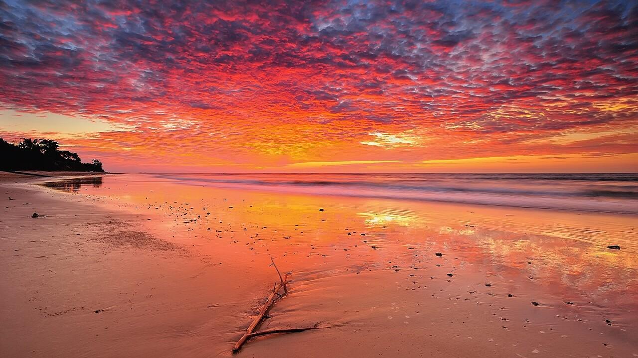 landscape-beach-tropical-qhd.jpg