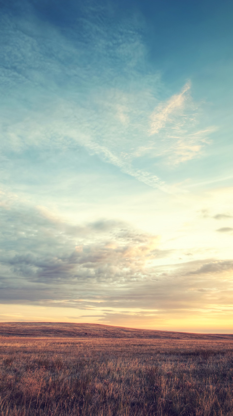 landscape-nature-fields-sky-4k-ta.jpg