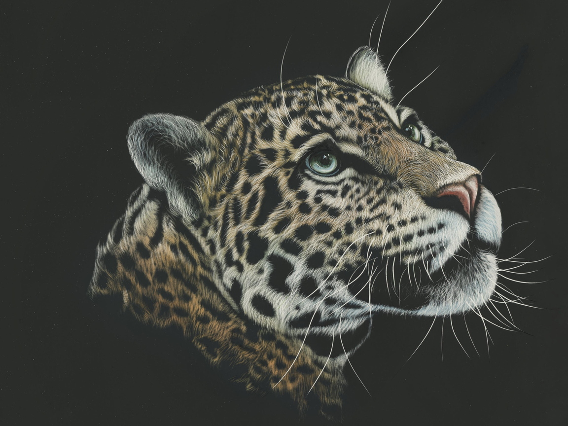 leopard-painting-4k-4g.jpg