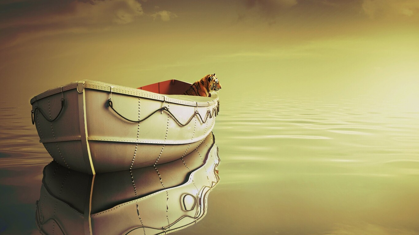 Life Of Pi Boat