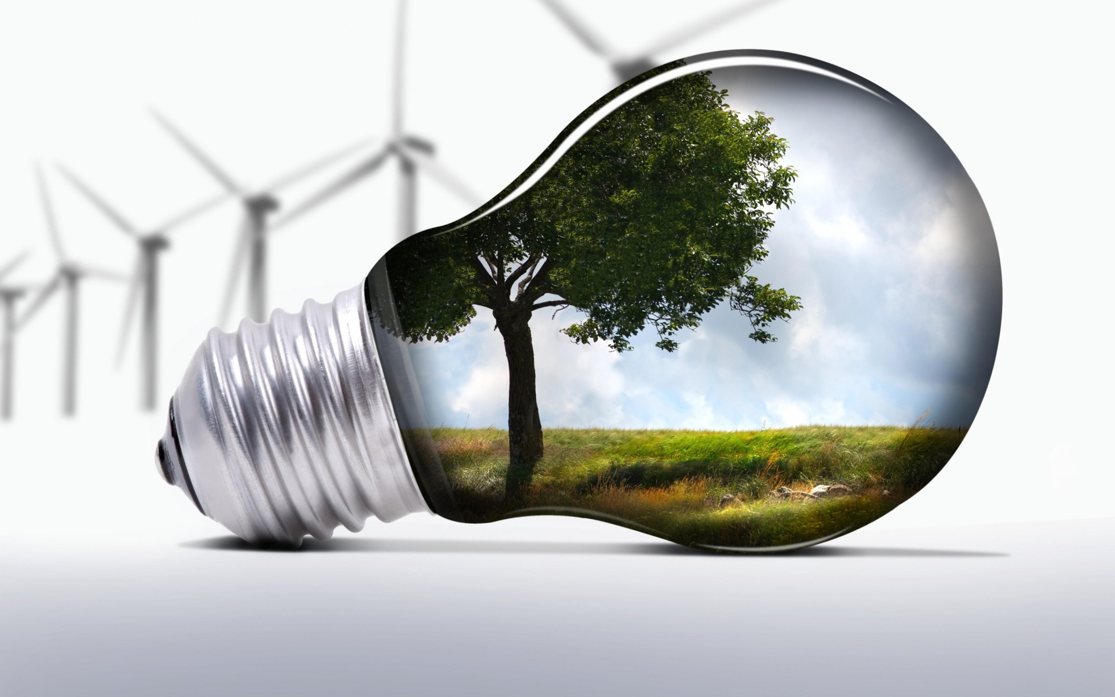 light-bulb-art-image.jpg