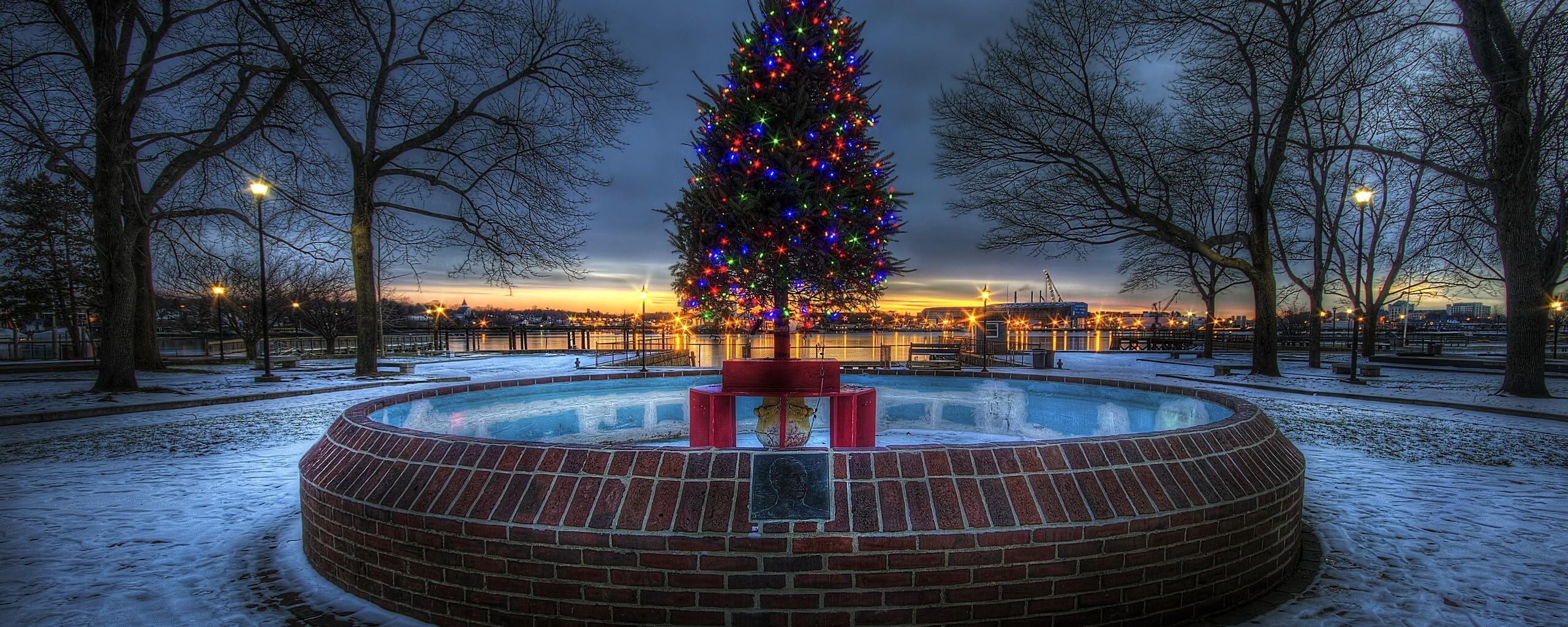 lighted-christmas-tree-8b.jpg