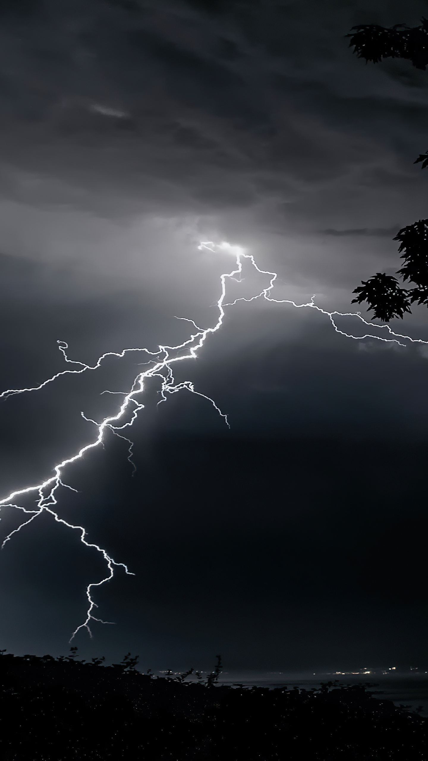 lightning-strikes-on-trees-4k-q4.jpg