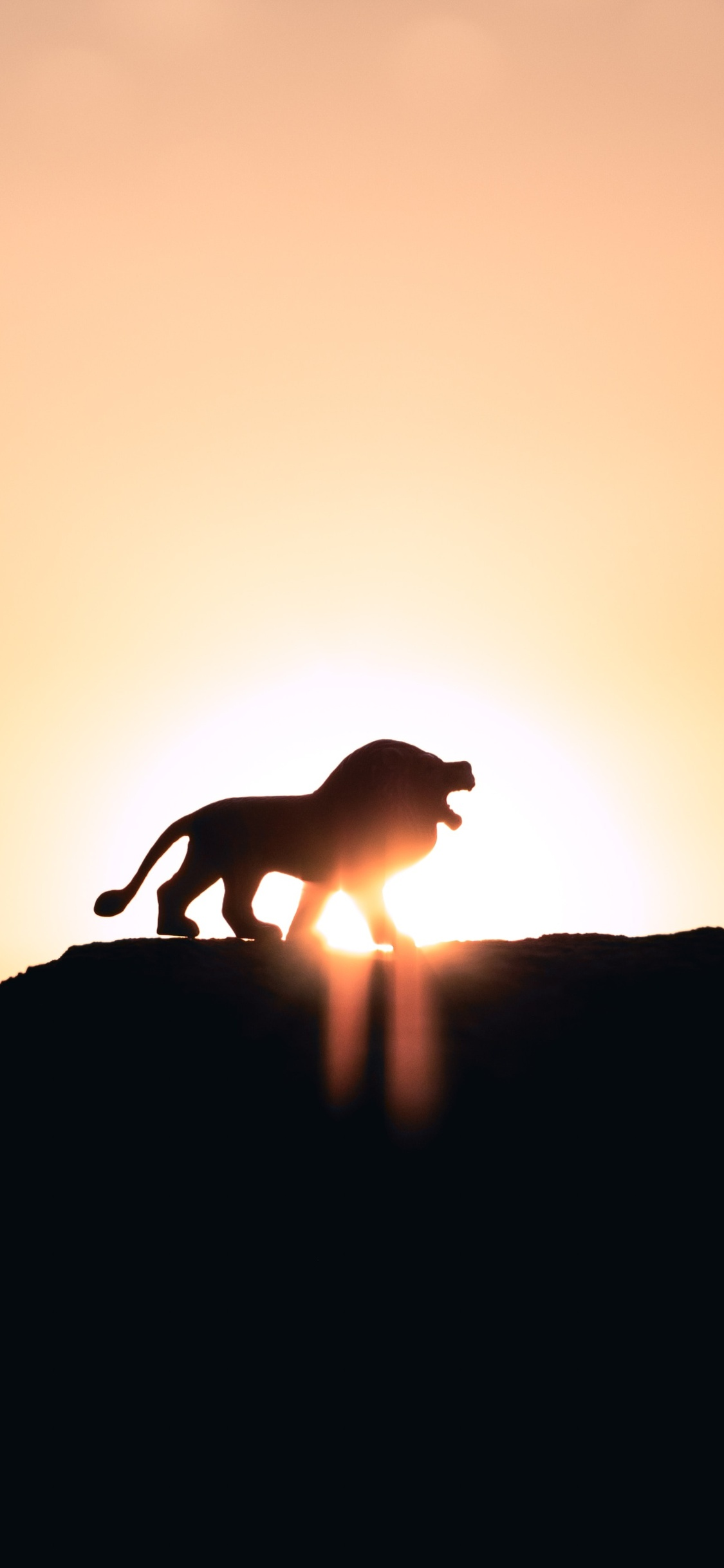 1125x2436 Lion Roaring On Top Of Mountain 5k Iphone Xs Iphone 10