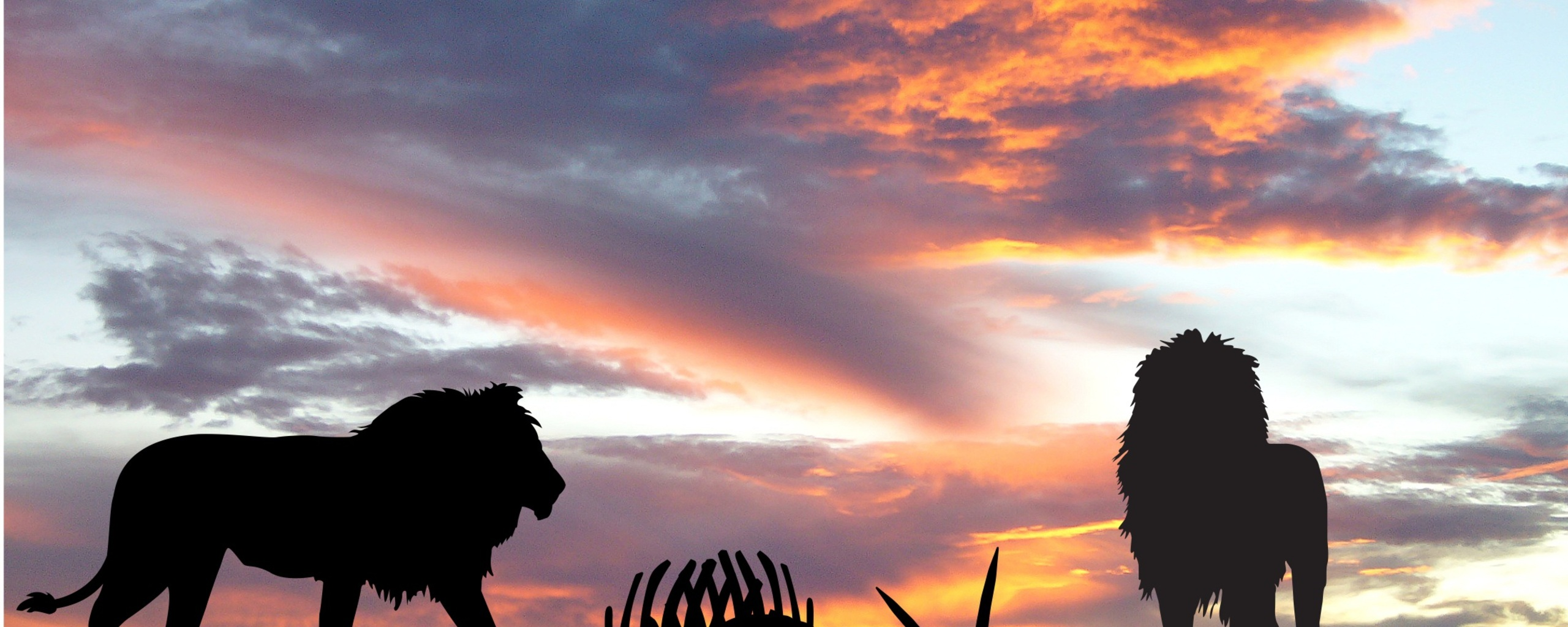 lions-africa-silhouette-sunset-od.jpg