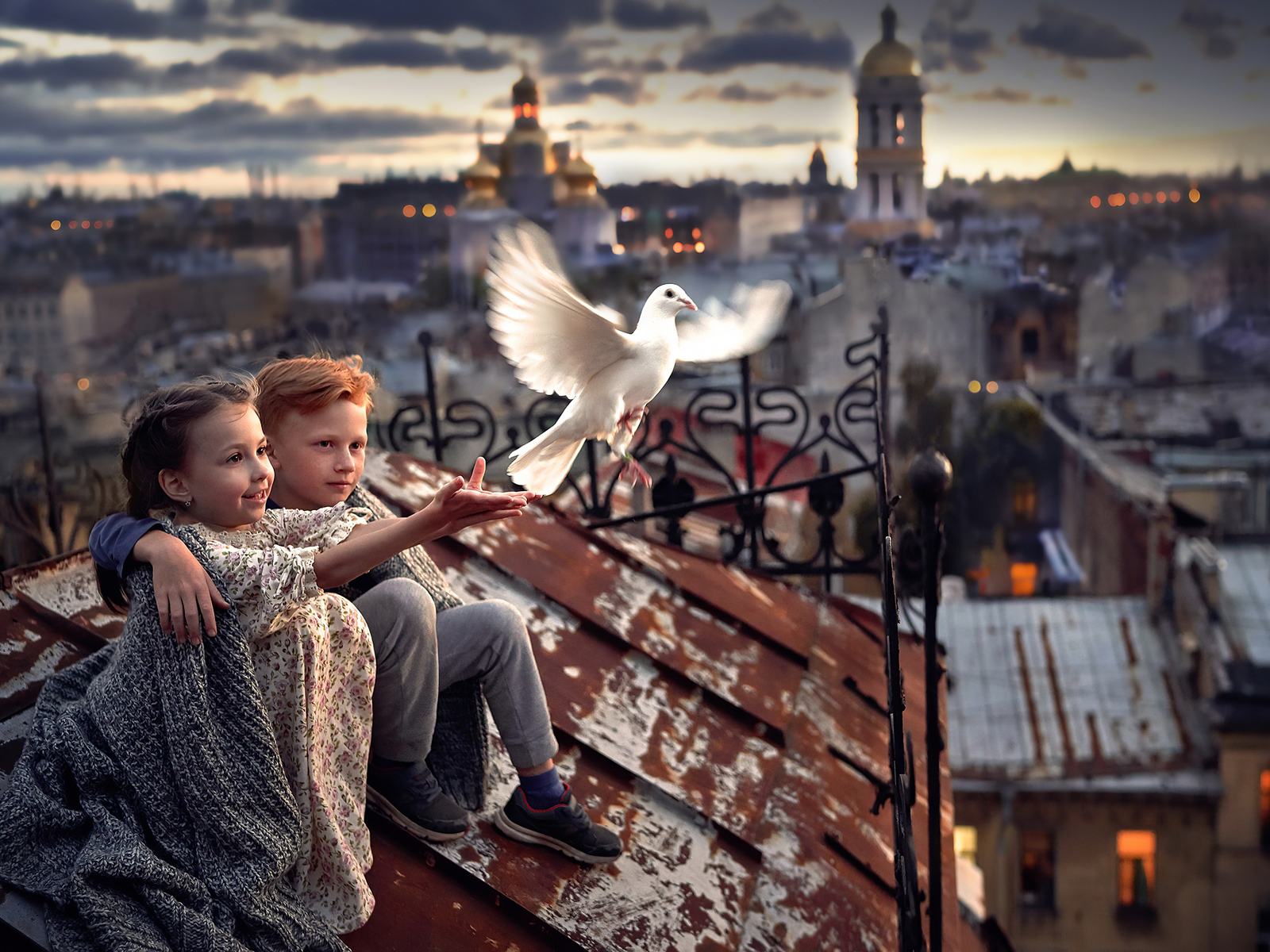 little-boy-and-girl-pigeon-roof-4k-ho.jpg