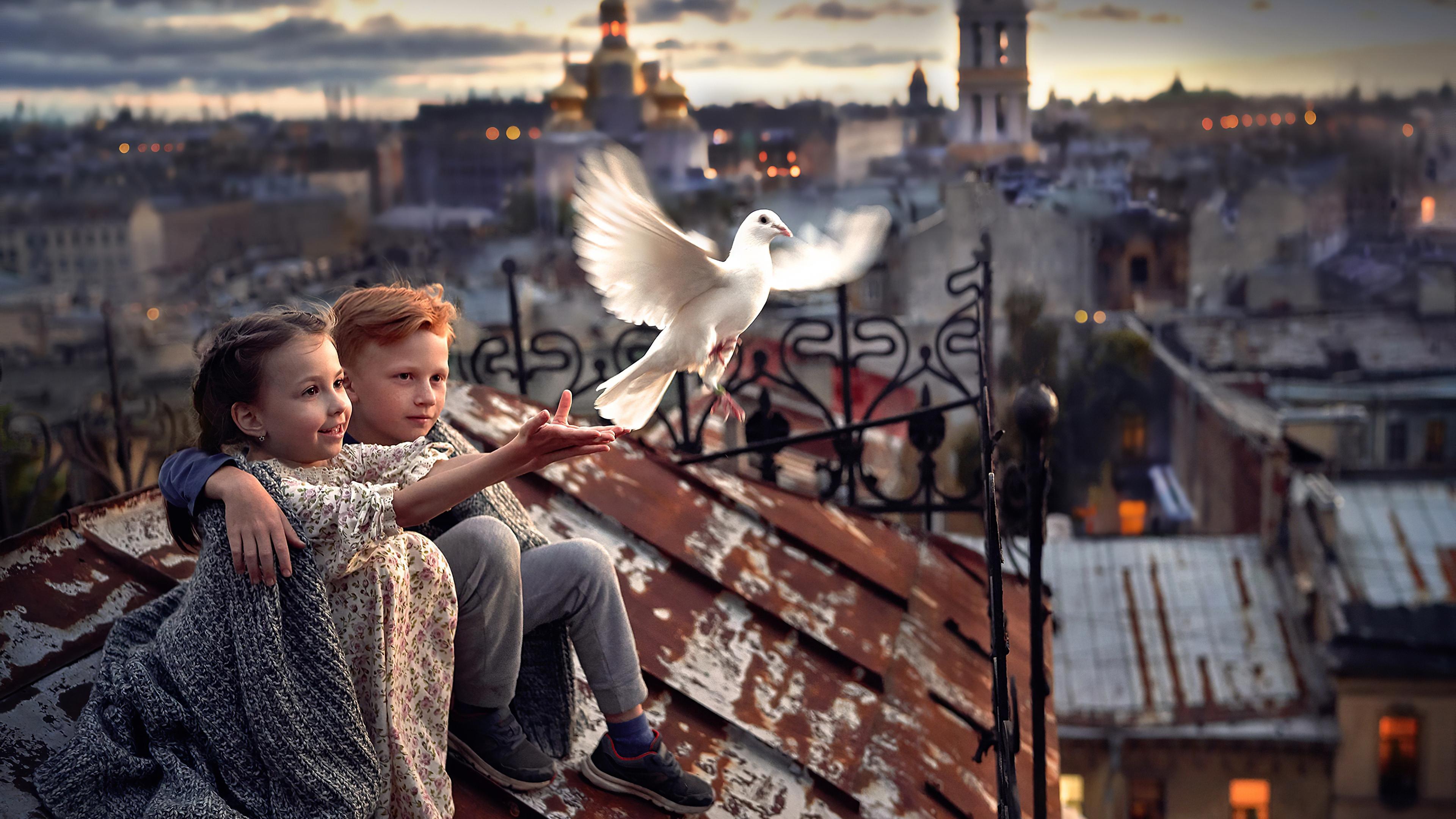 3840x2160 Little Boy And Girl Pigeon Roof 4k 4k Hd 4k