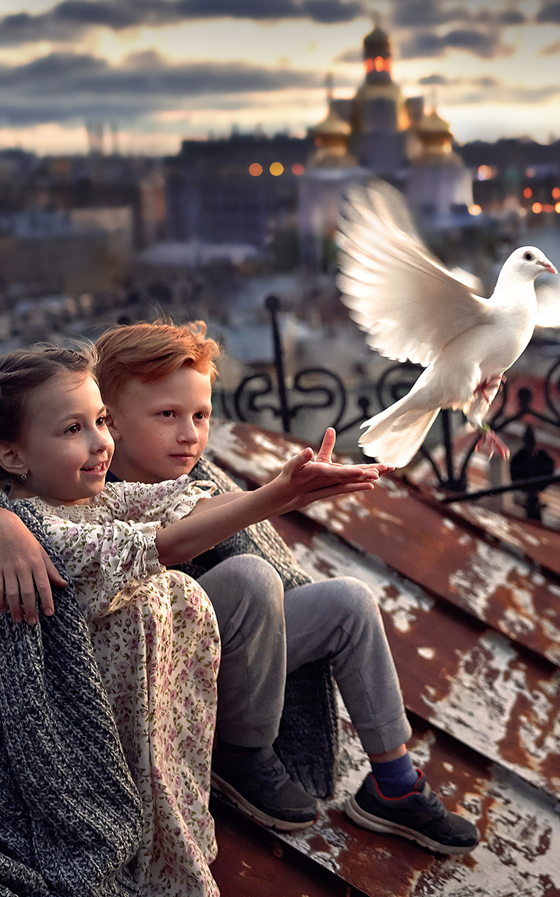 little boy and girl pigeon roof 4k ho