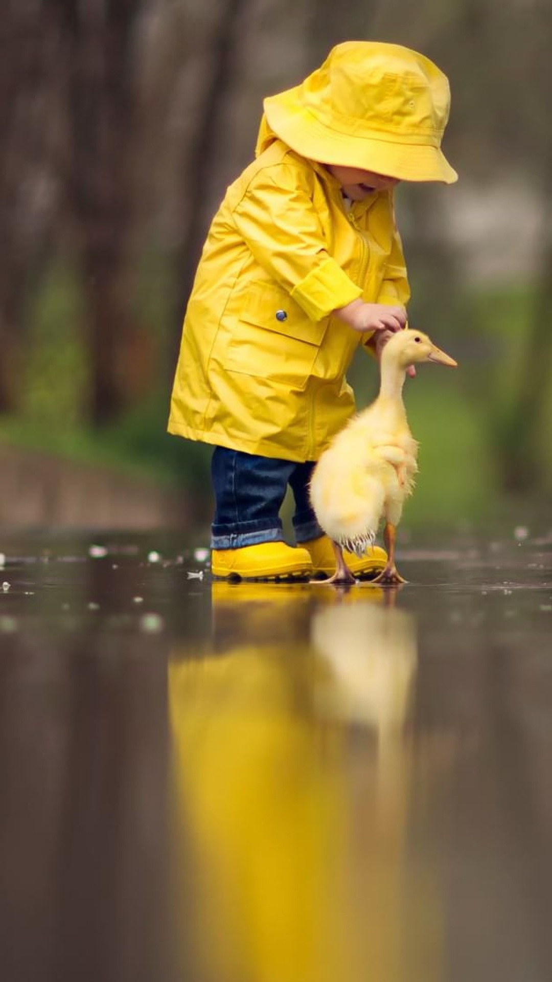 little-boy-child-playing-with-ducks-kv.jpg
