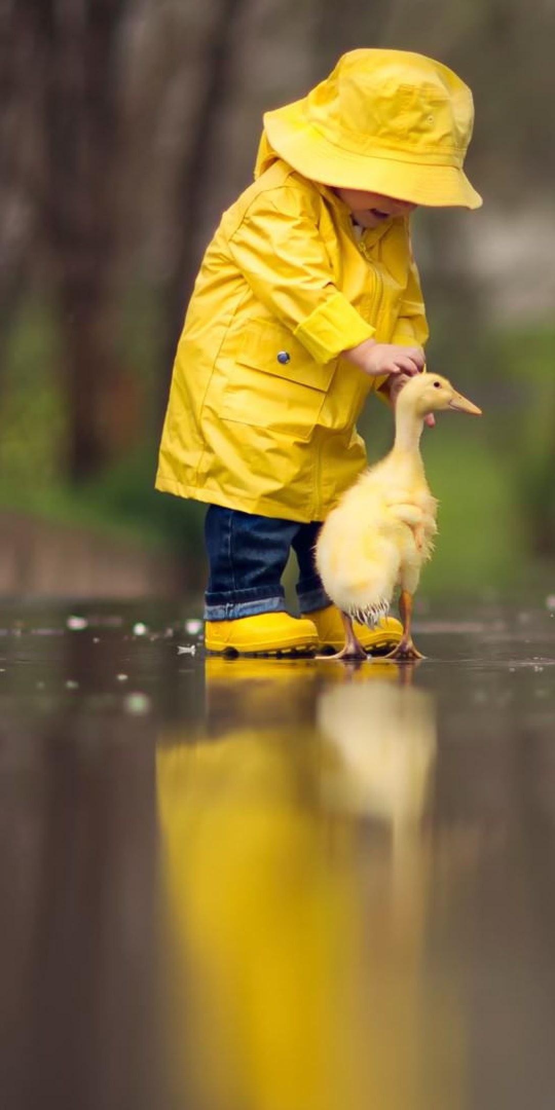 little-boy-child-playing-with-ducks-kv.jpg