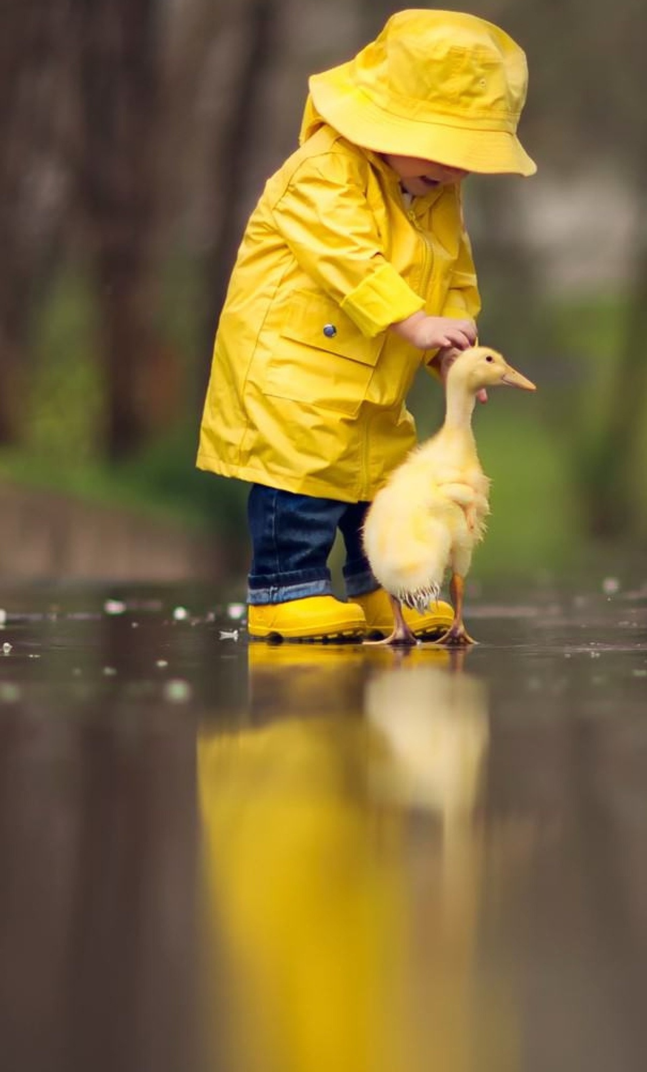 1280x2120 little boy child playing with ducks iphone 6+ hd 4k