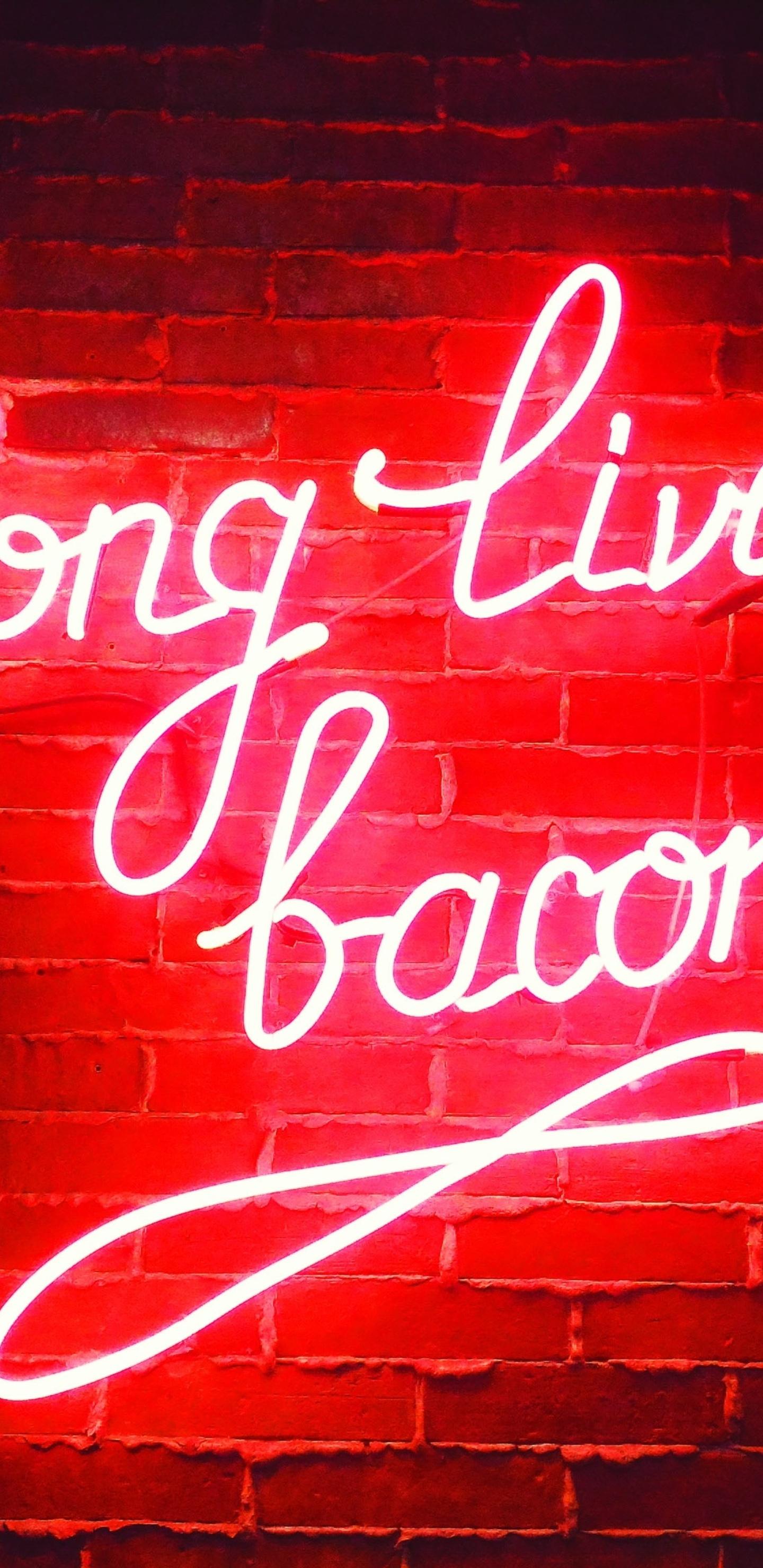 long-live-bacon-neon-lights-s9.jpg