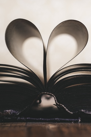 love-book-sf.jpg