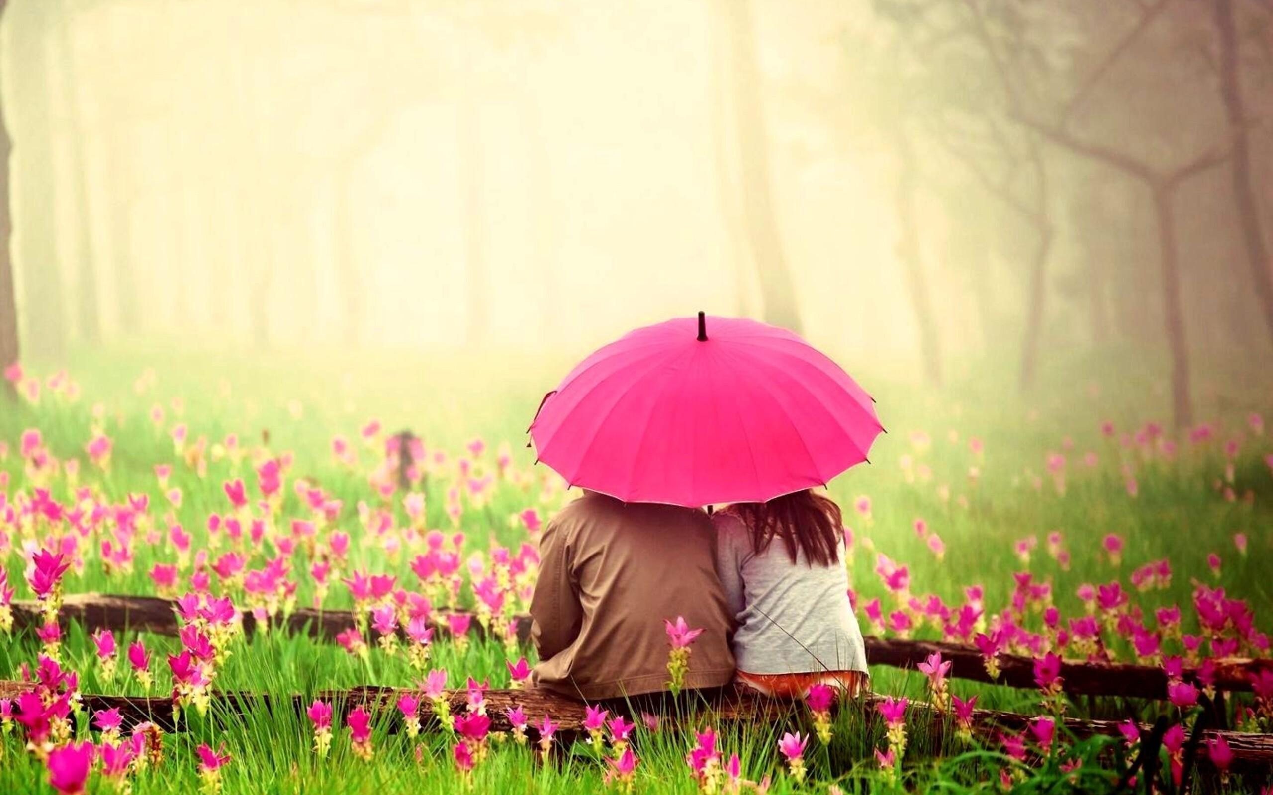2560x1600 Love Couple In Pink Garden ...