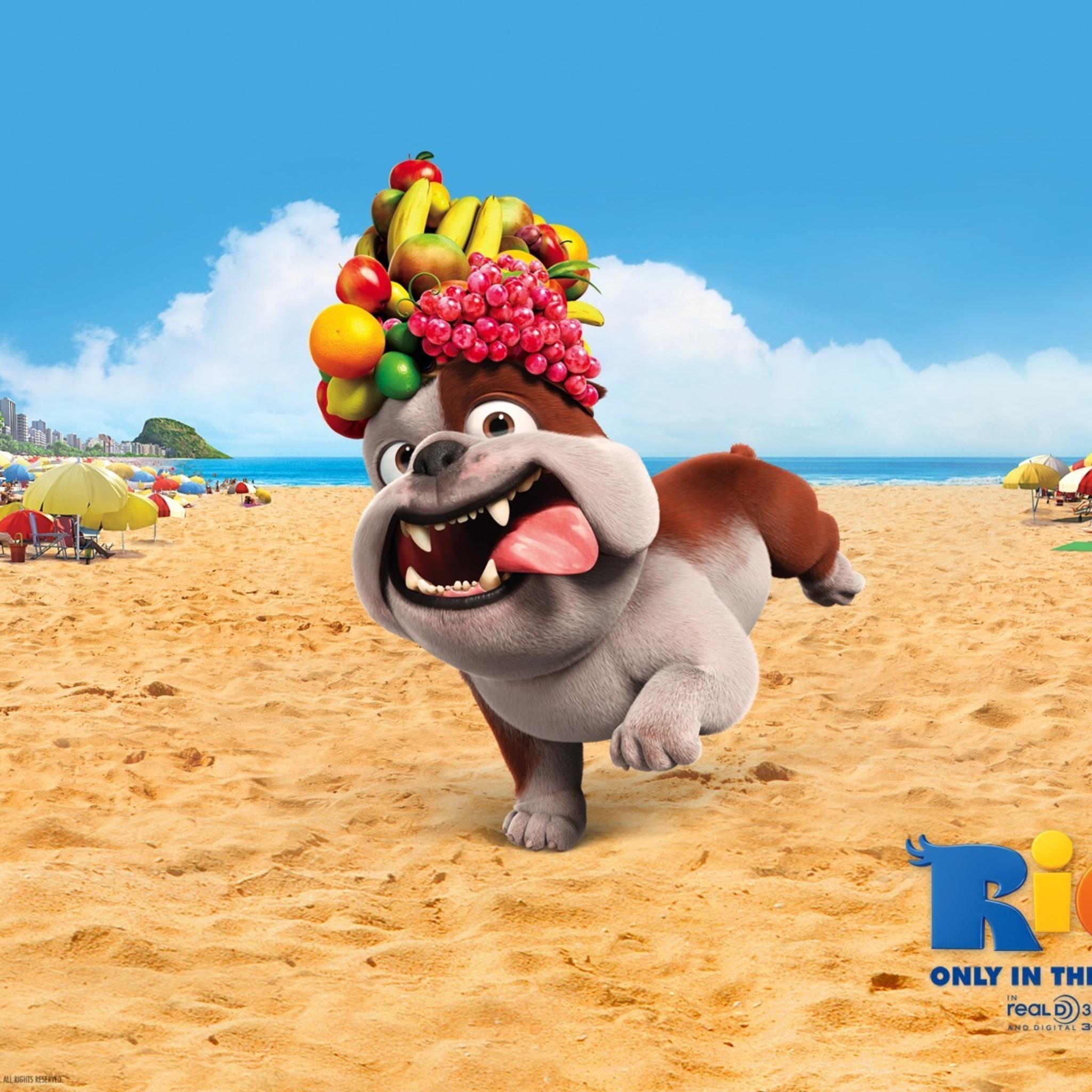 luiz-bulldog-in-rio-movie.jpg