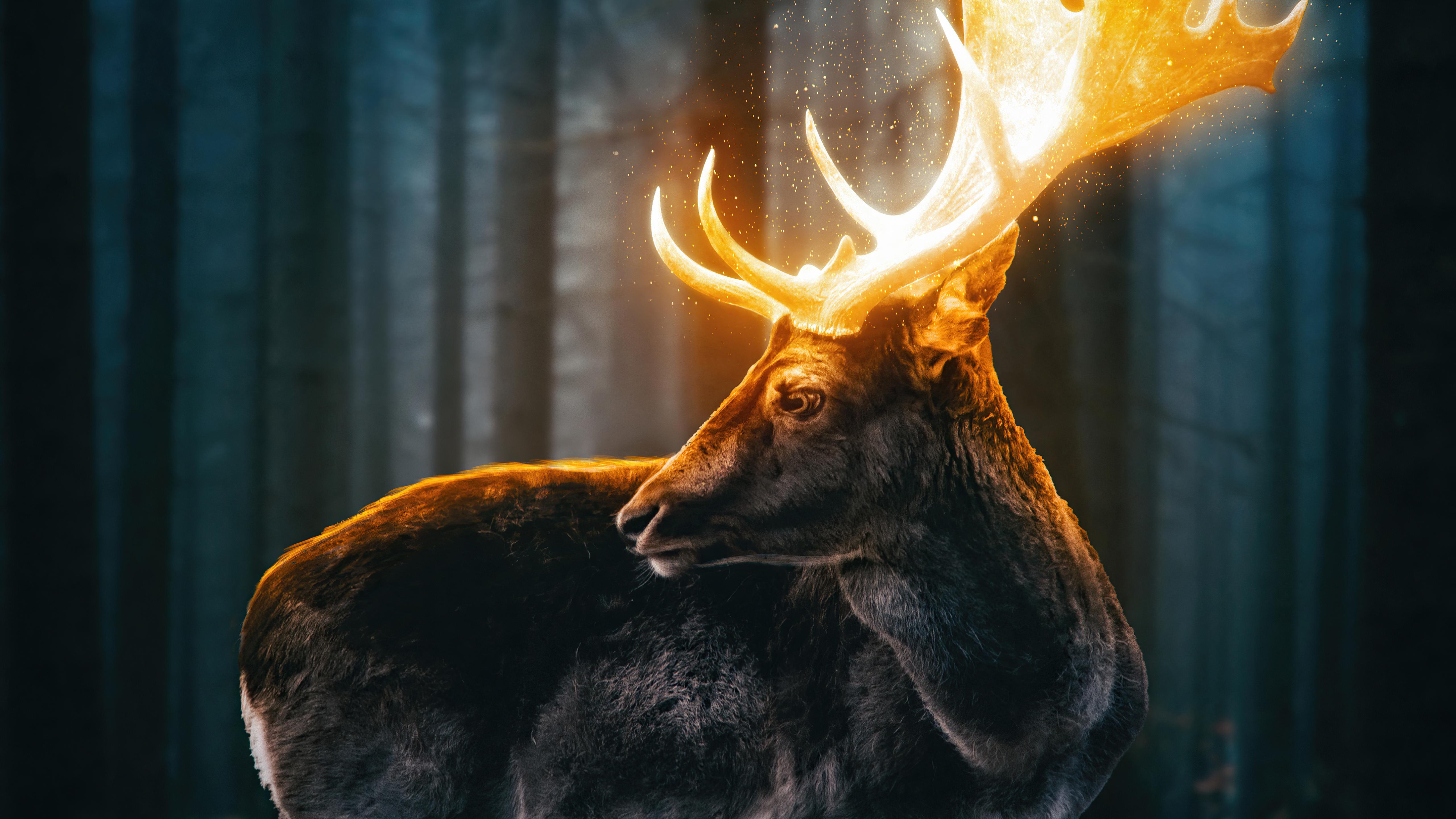 magical-reindeer-forest-5k-ae.jpg