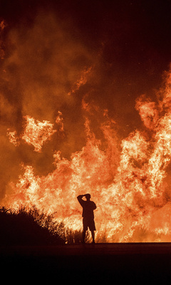 man-watching-fire-in-the-jungle-6v.jpg