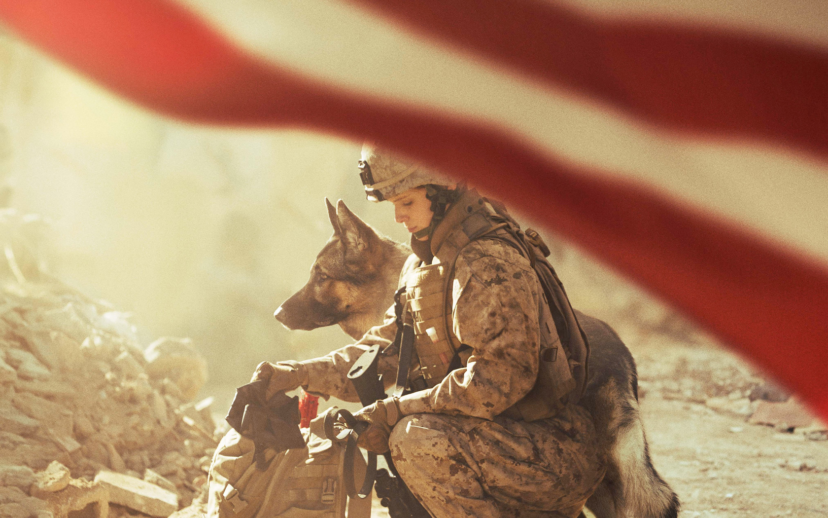 megan-leavey-2017-movie-4k-wide.jpg