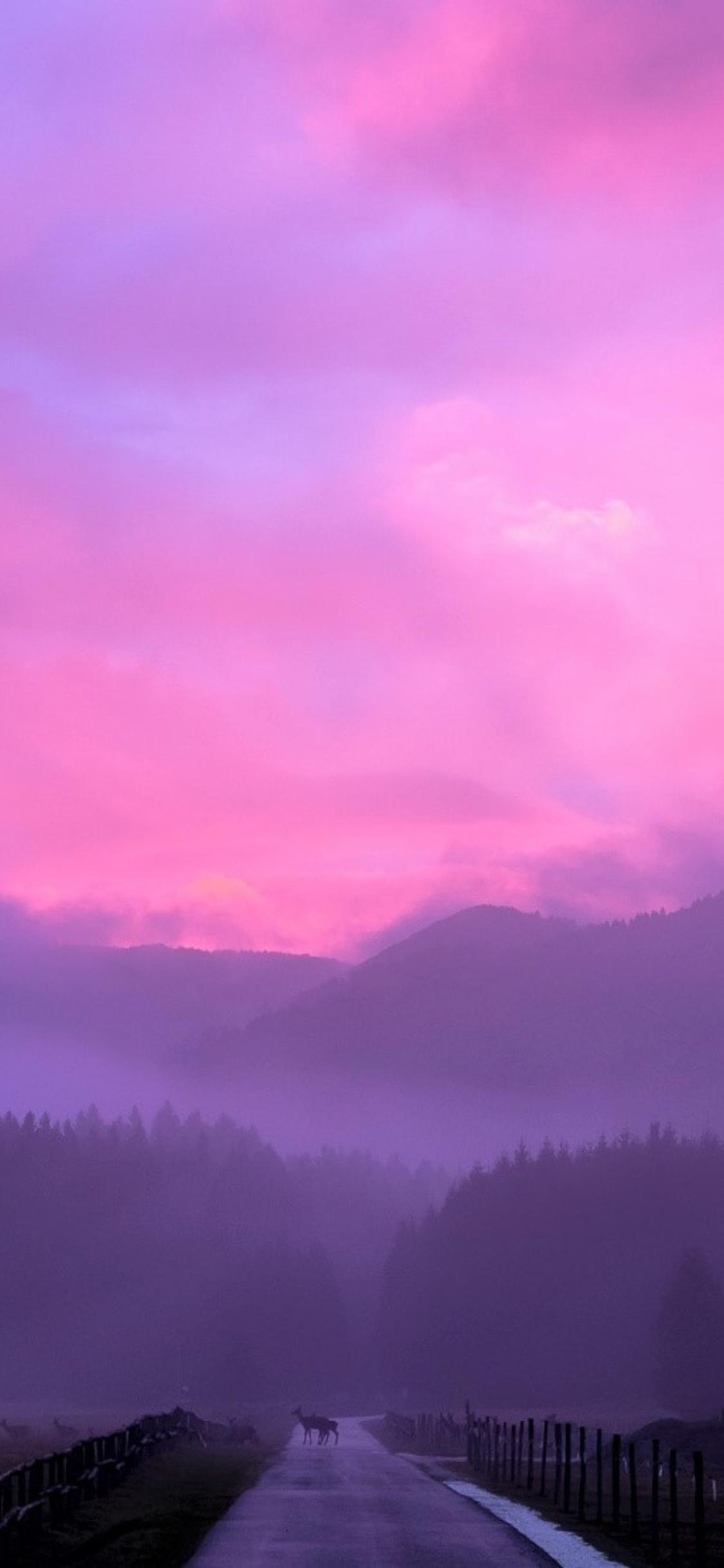 Misty Pink Sunset Ze
