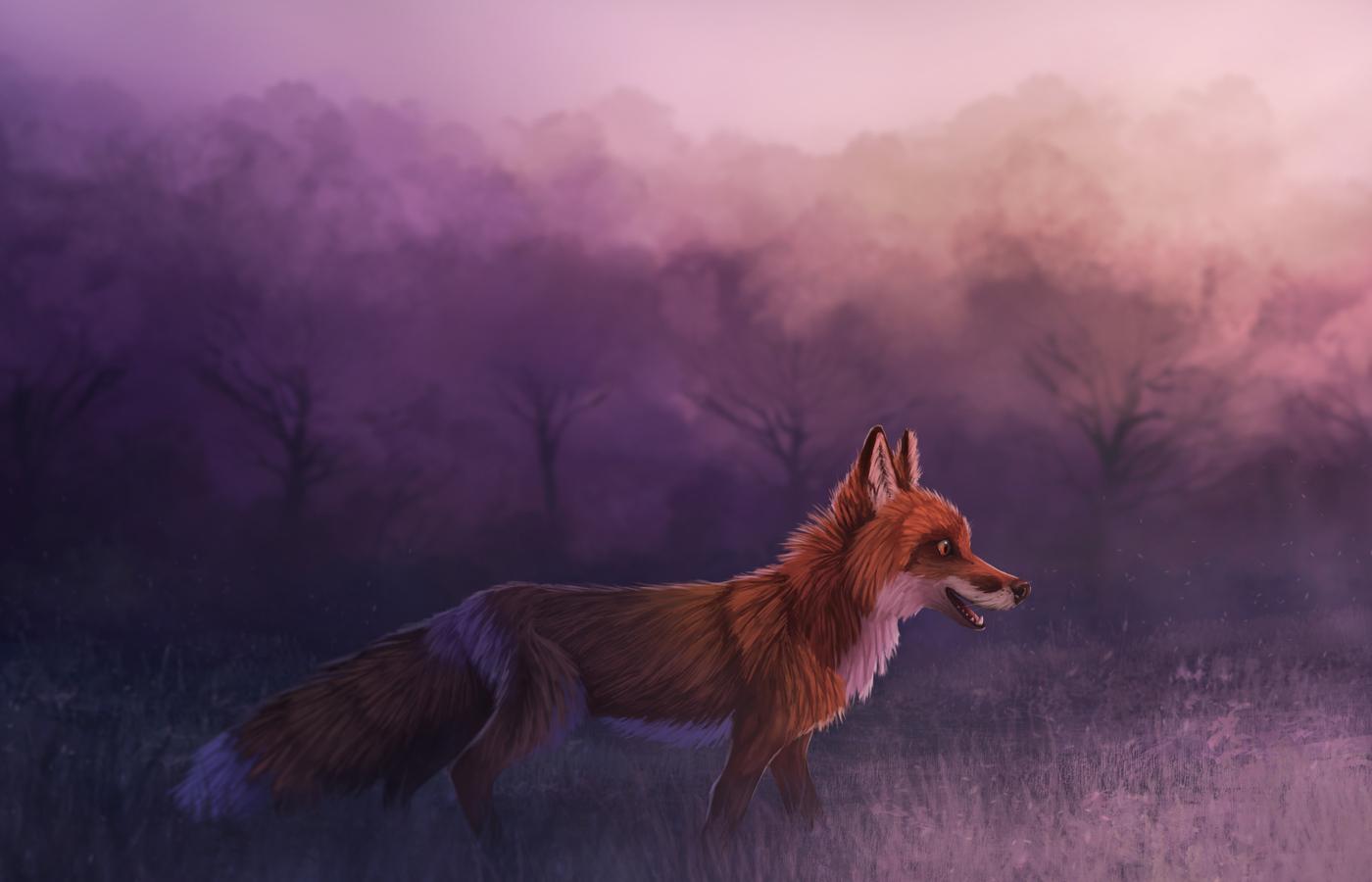 misty-red-fox-4k-cj.jpg