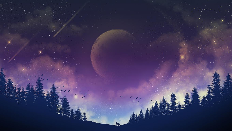 moon fox galaxy 4k 79