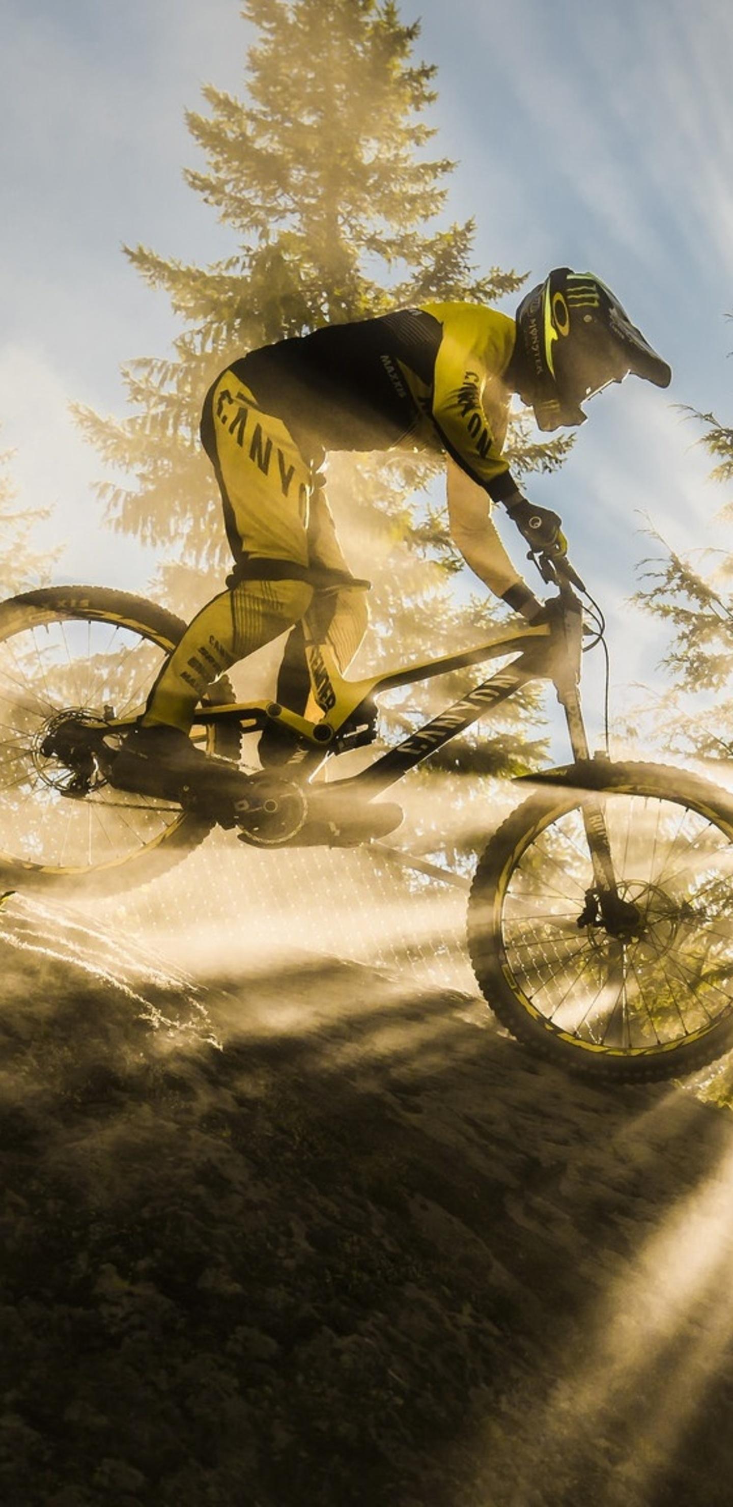 1440x2960 Mountain Bike Sunbeam Samsung Galaxy Note 9 8 S9 S8 S8
