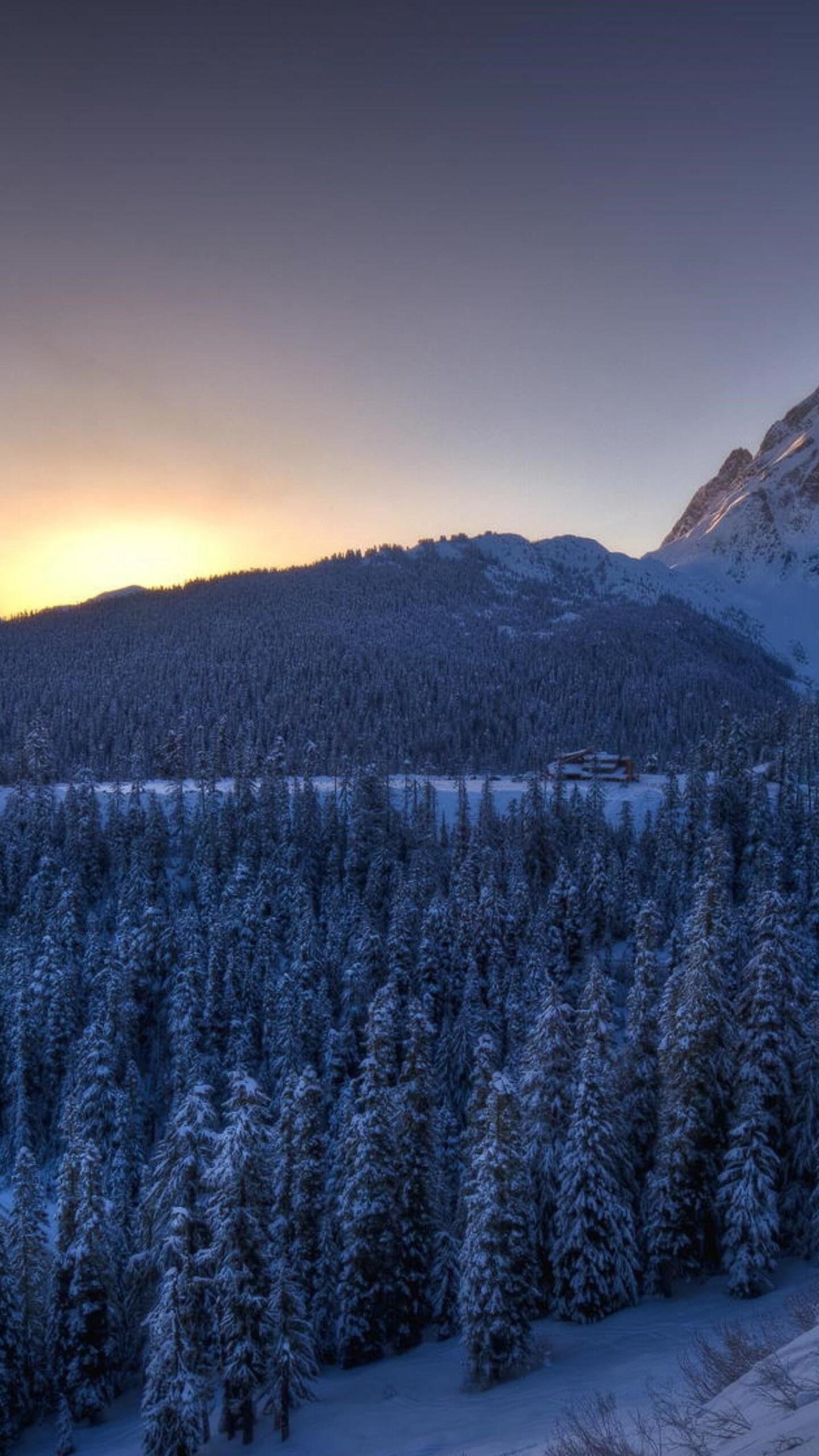 Top Wallpaper Mountain Google Nexus - mountains-winter-snow-1440x2560  Gallery_98288.jpg