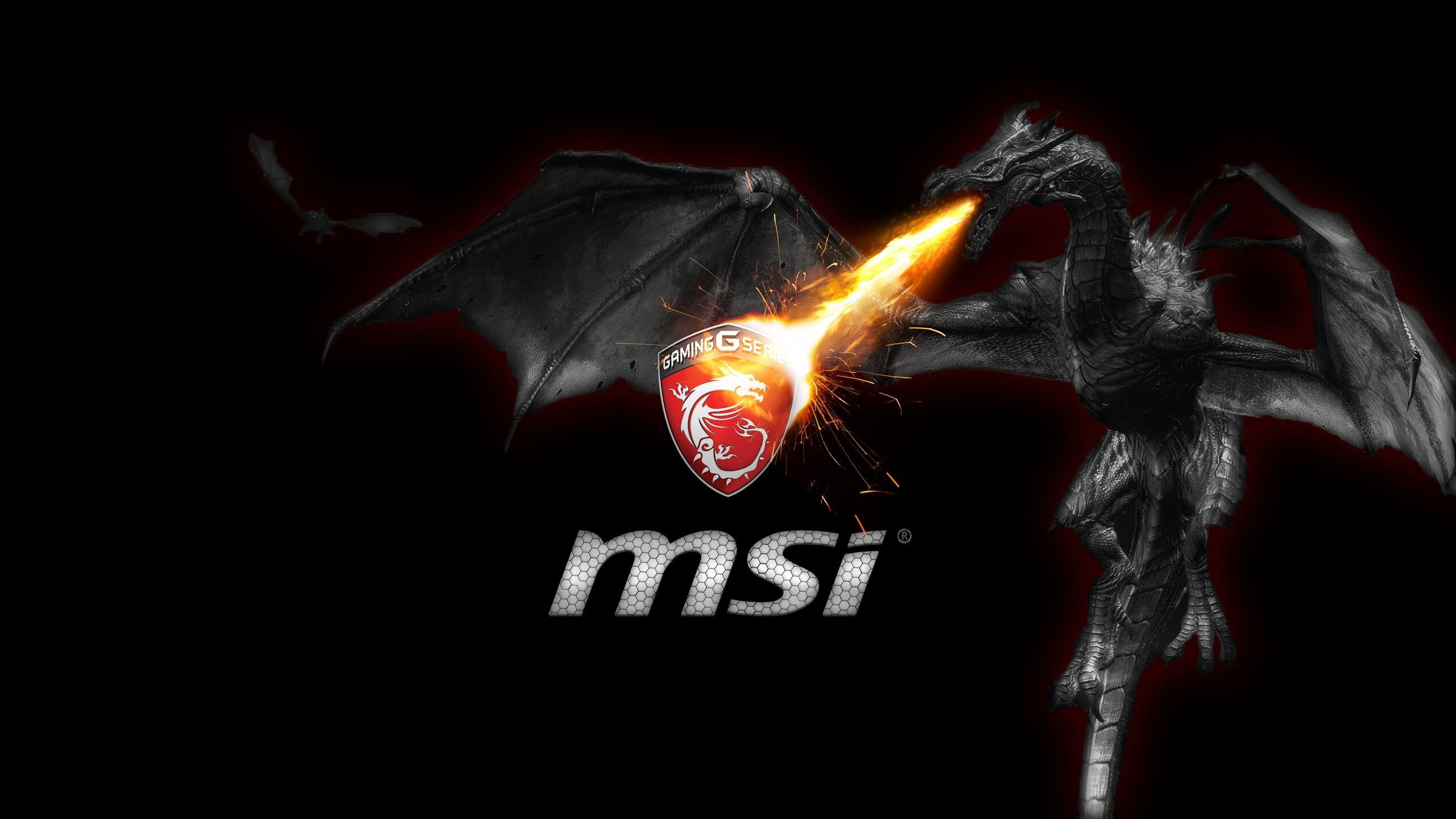 MSI 1440P Resolution HD 4k Wallpapers