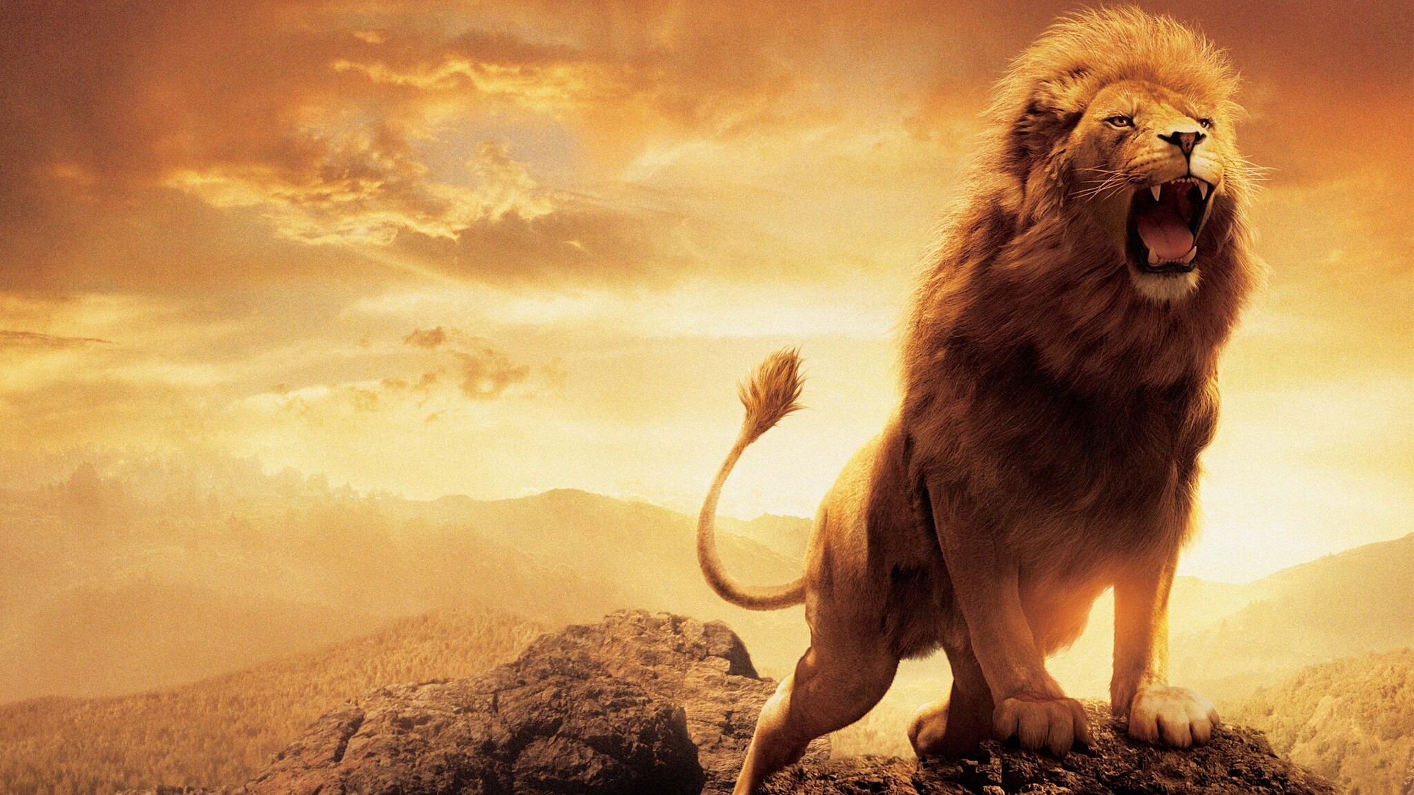 2048x1152 Narnia Lion 2048x1152 Resolution Hd 4k Wallpapers Images