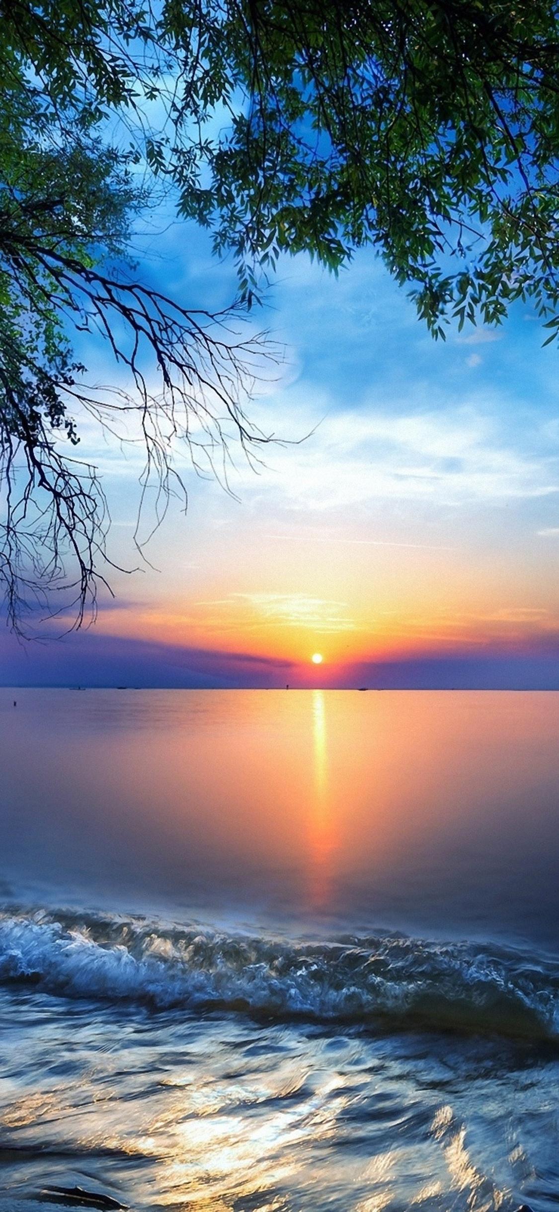 1125x2436 Nature Sea Sky Skyline Sun Tree Iphone Xs Iphone 10 Iphone