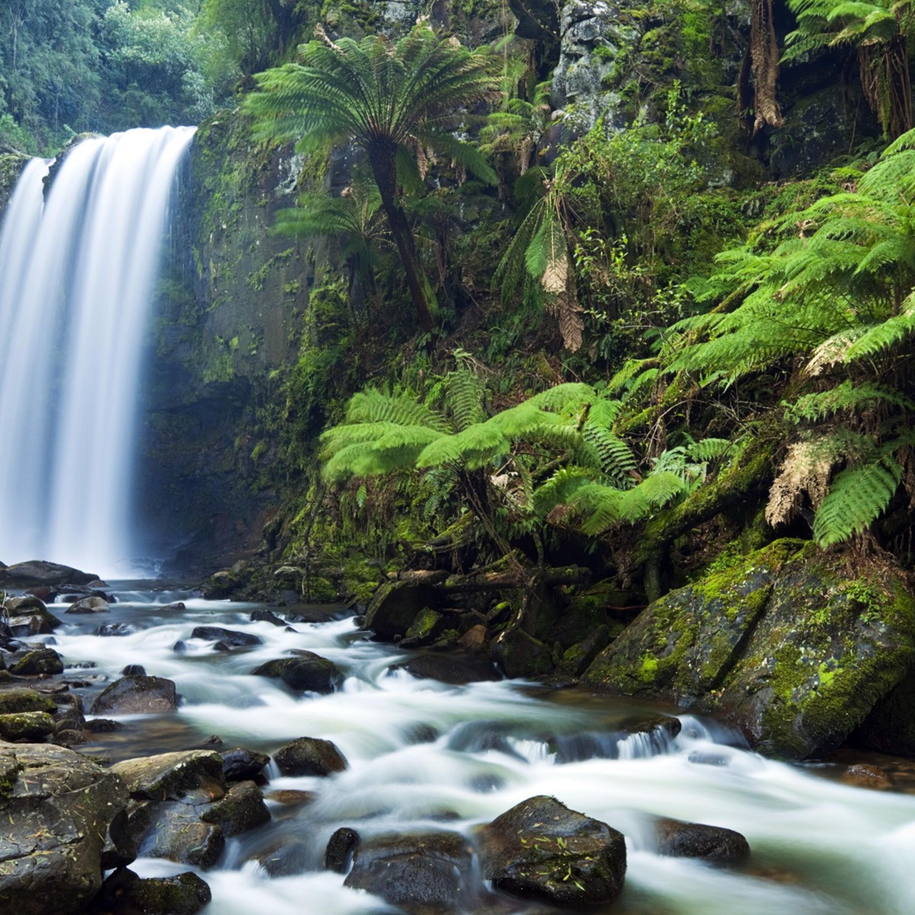 2932x2932 Nature Waterfall Ipad Pro Retina Display HD 4k ...
