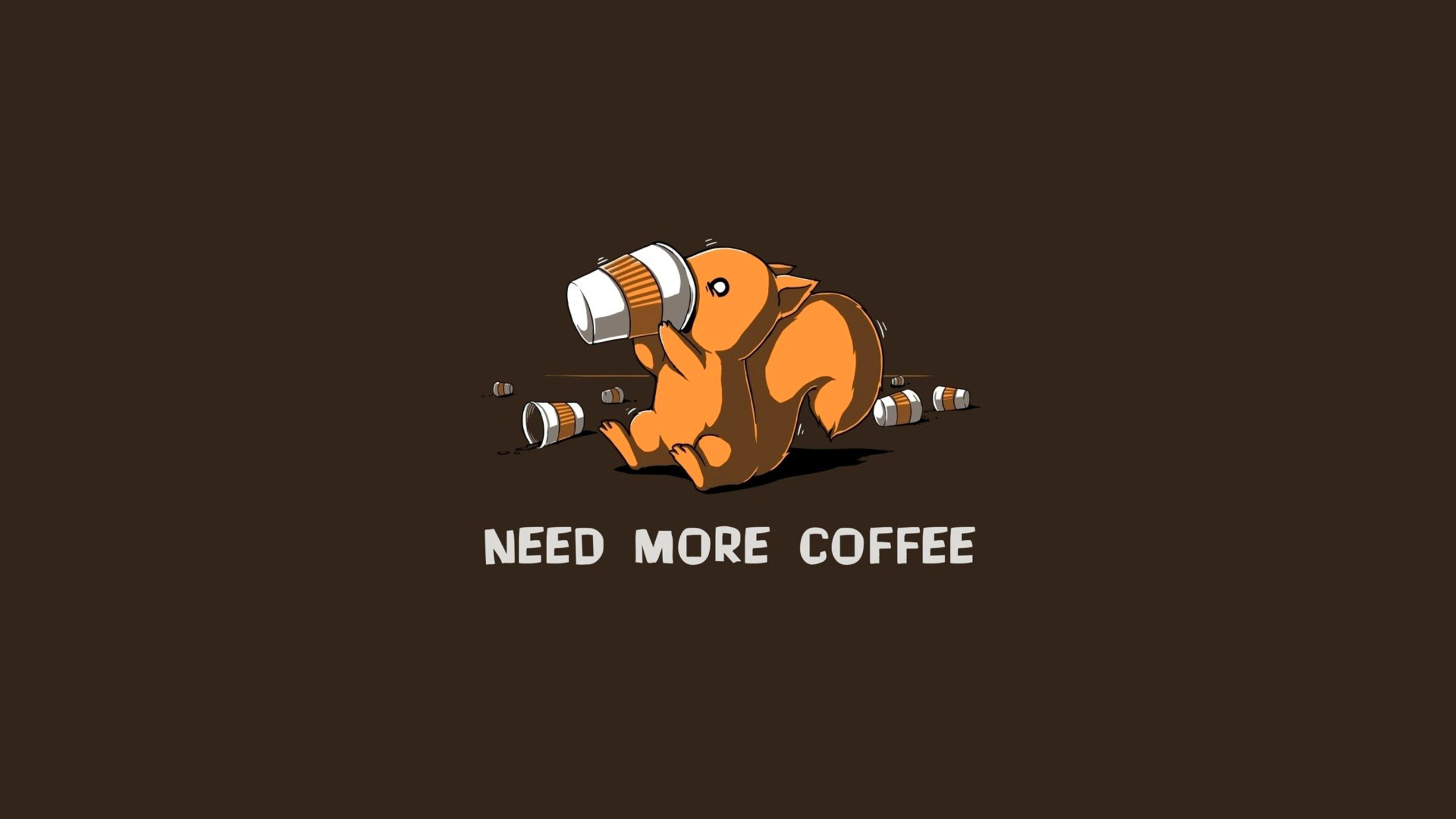 2560x1440 need more coffee programmer story 1440p resolution hd 4k