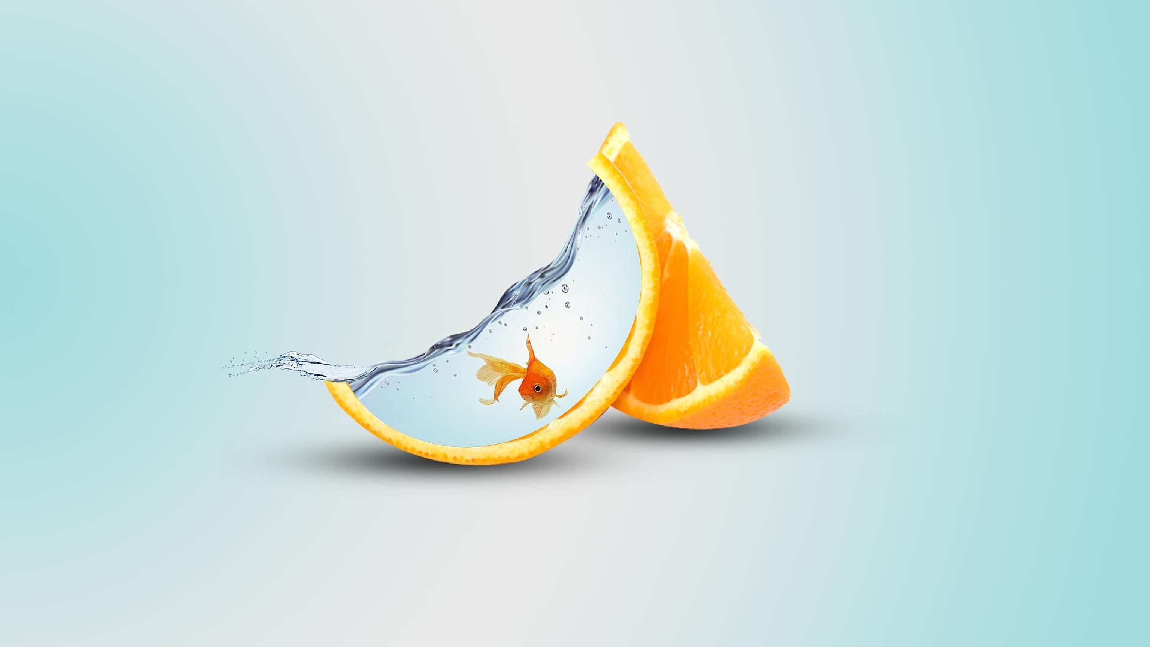 orange-artwork.jpg