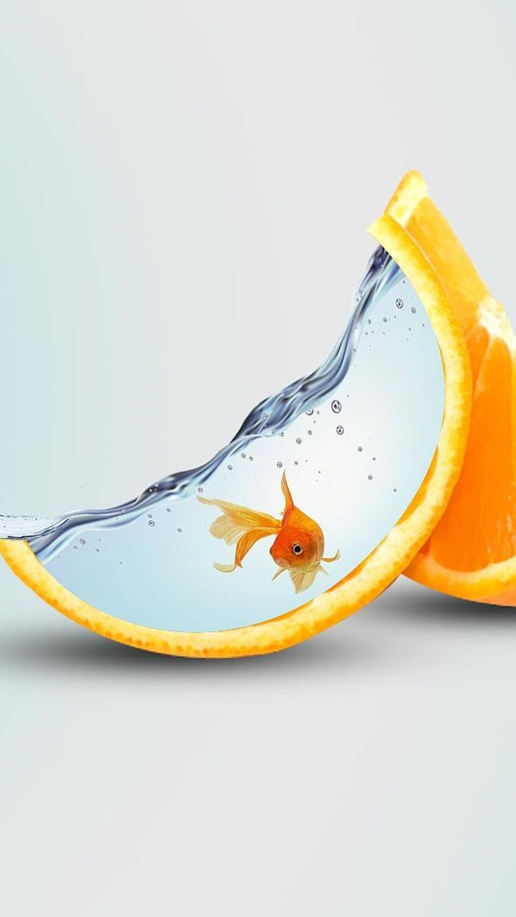 orange-artwork.jpg