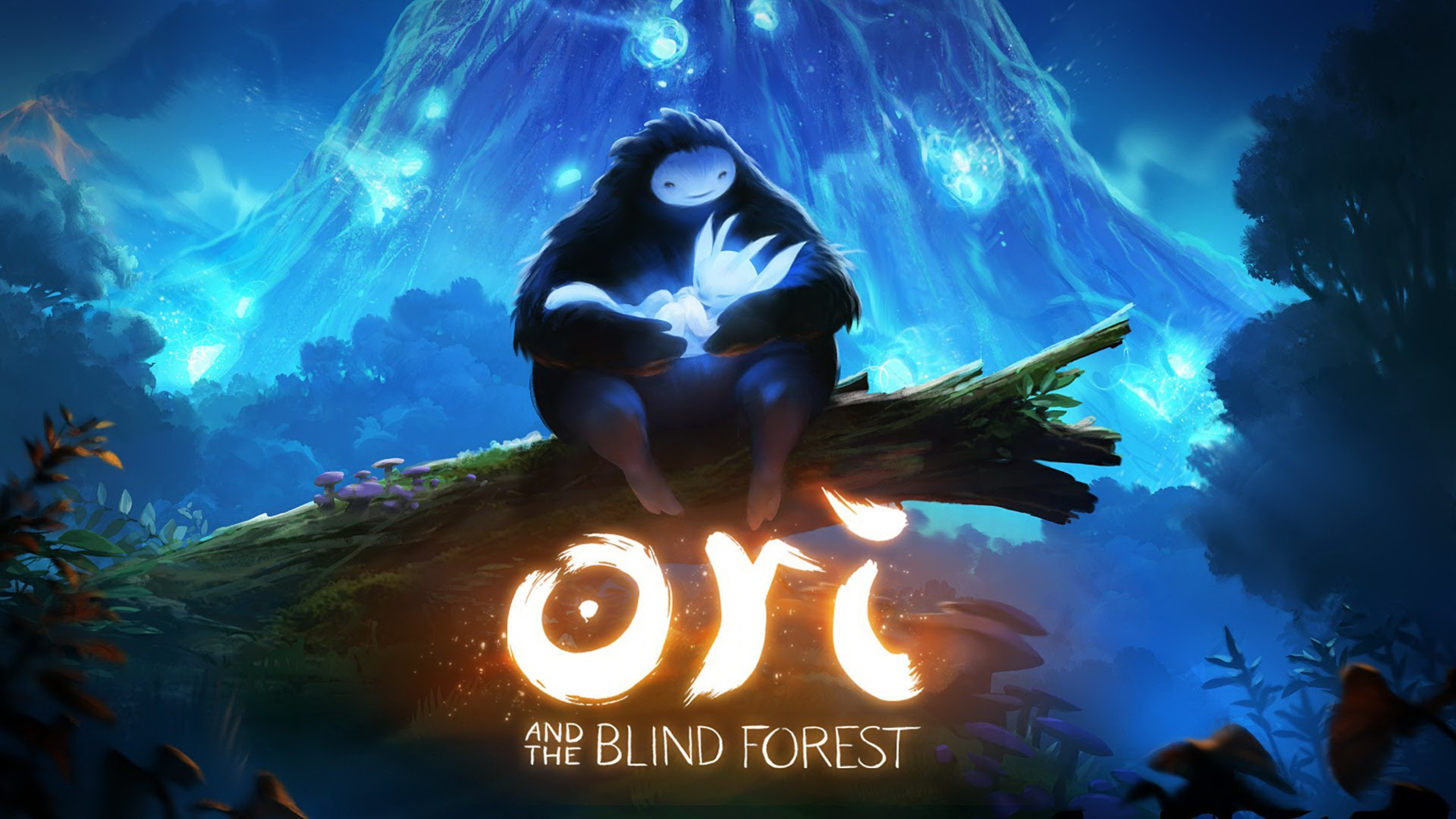 2560x1440 ori and the blind forest 1440p resolution hd 4k wallpapers