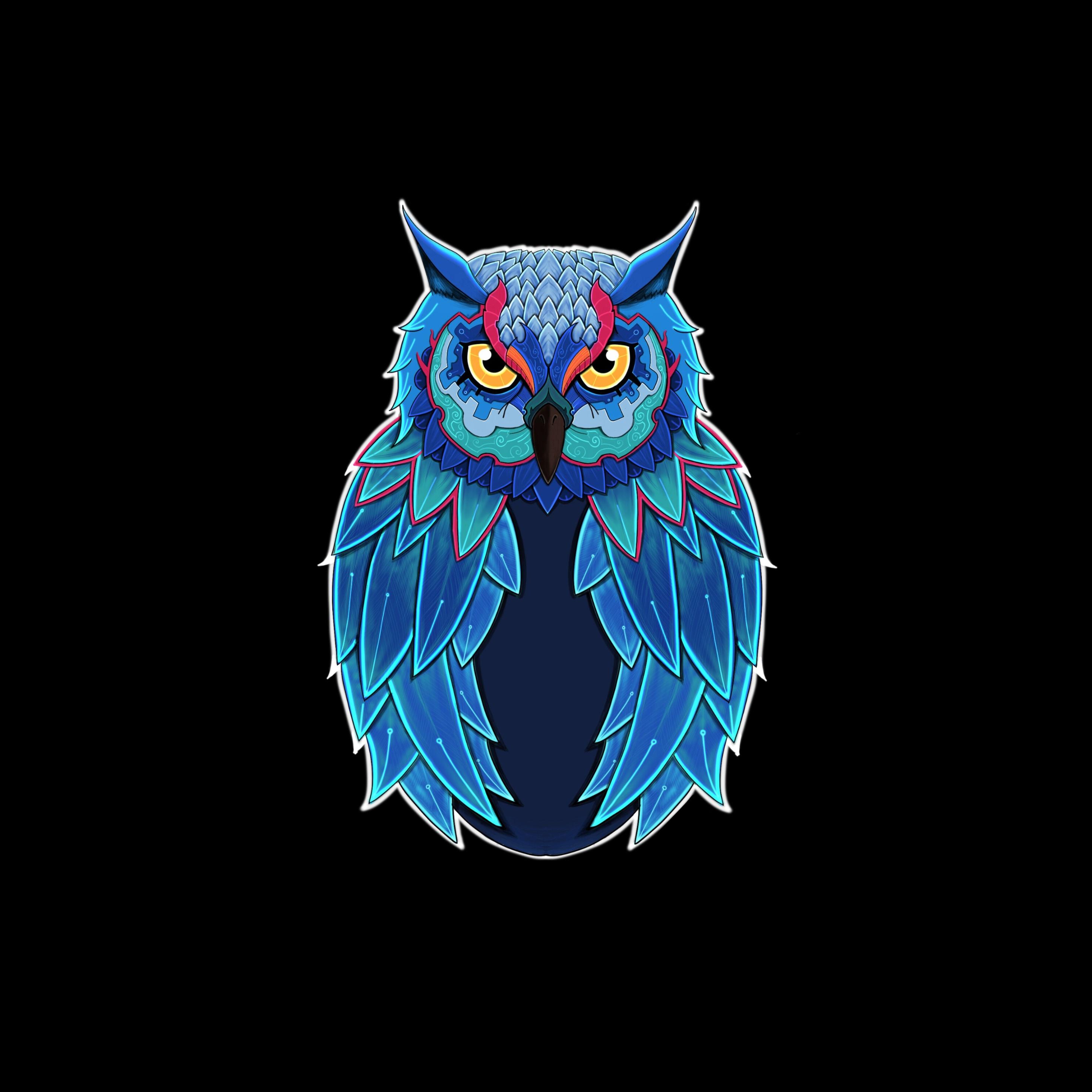 owl-dark-5k-pa.jpg