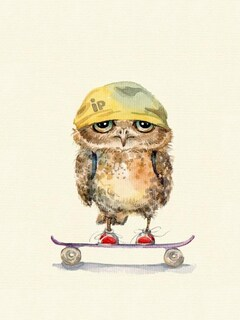 owl-on-skateboard.jpg