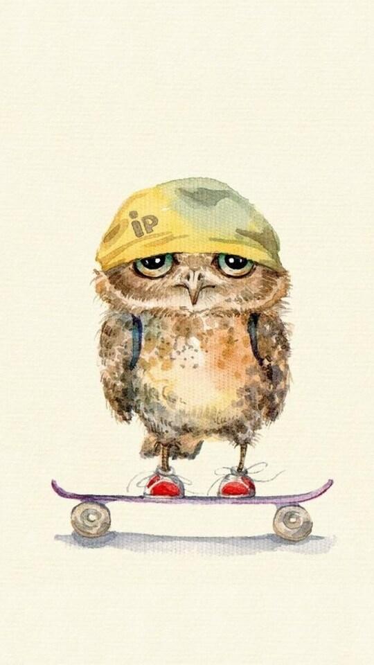 owl-on-skateboard.jpg