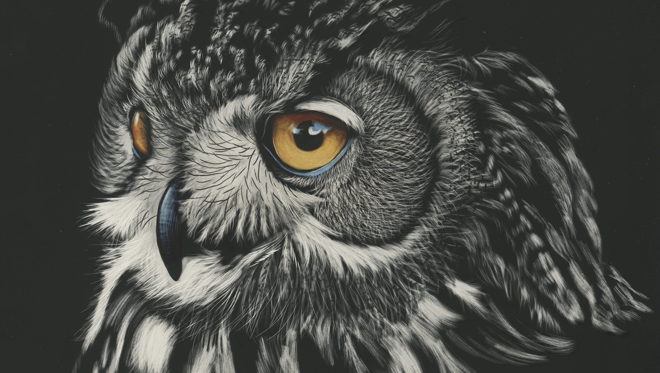 1360x768 Owl Painting 4k Laptop Hd Hd 4k Wallpapers Images Backgrounds Photos And Pictures